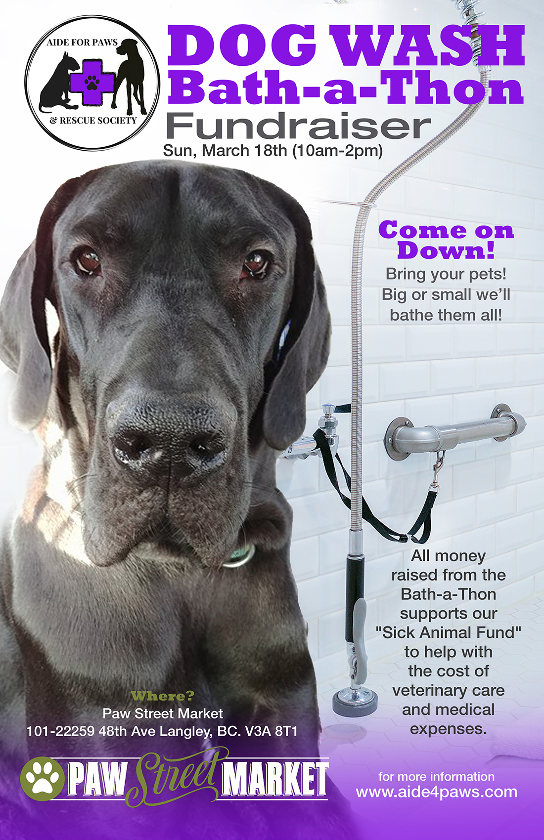 Aide for Paws Bath-a-Thon_Poster.jpg