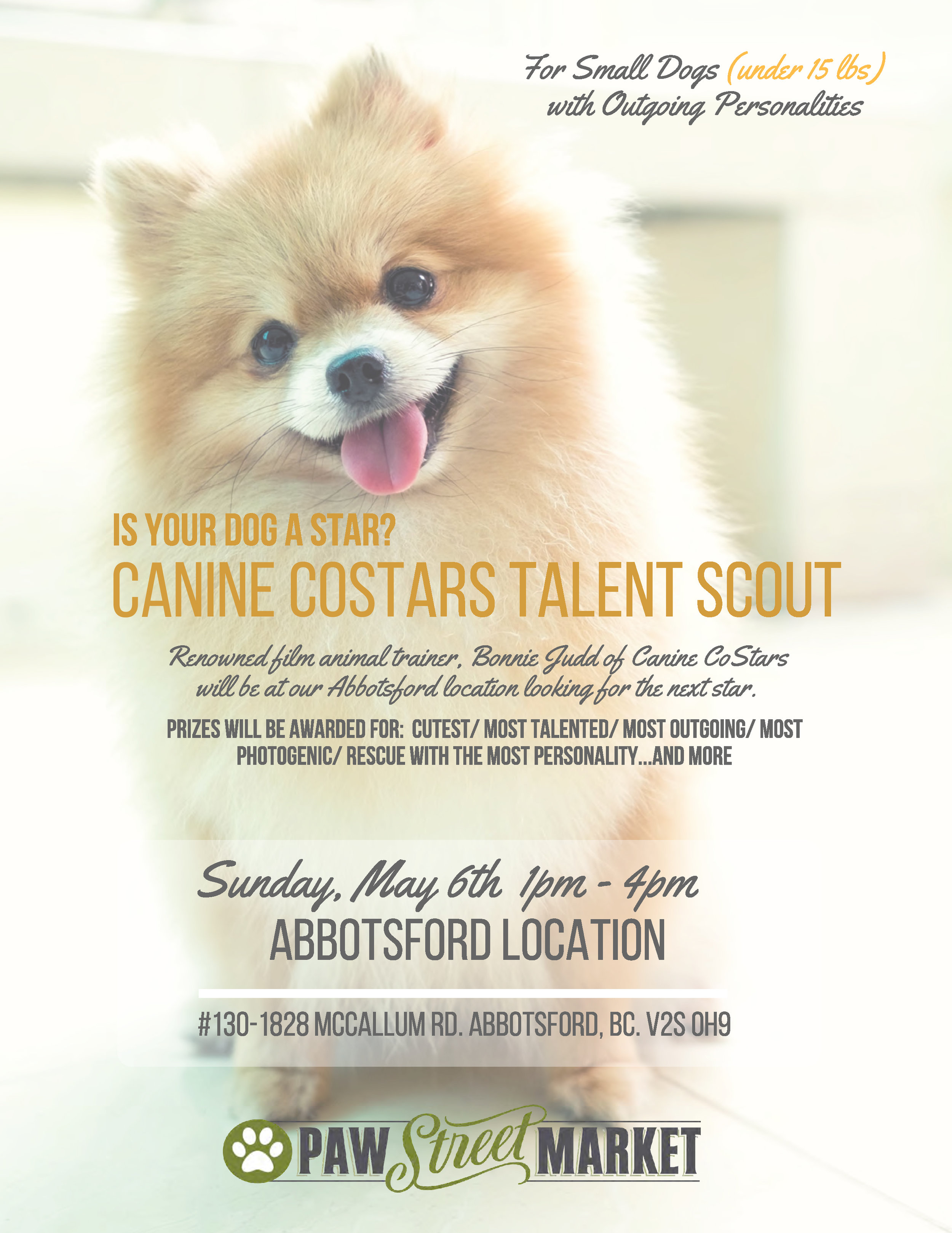 Canine CoStars Poster s.jpg