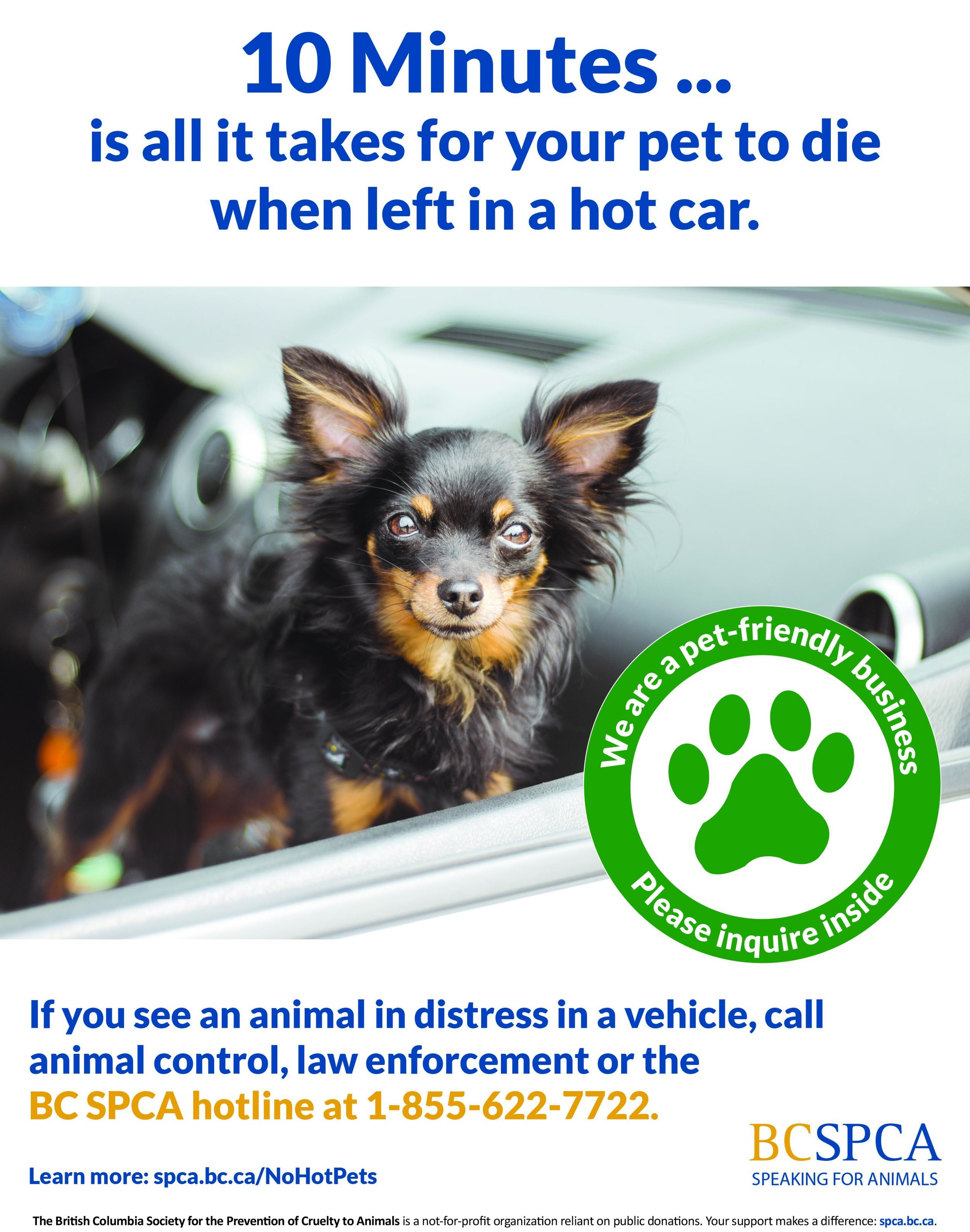 No-hot-pets-poster-pet-friendly-business.jpg