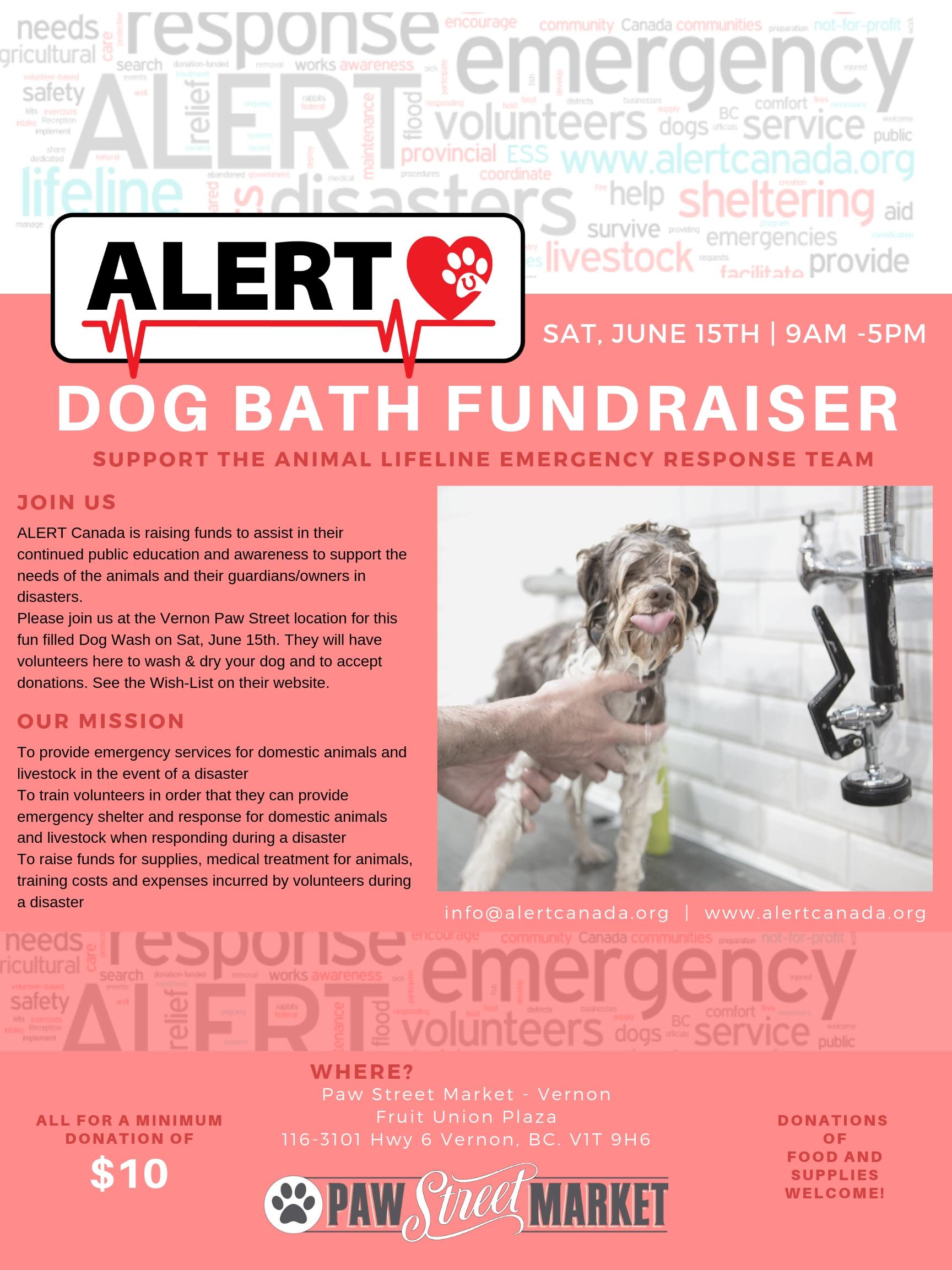 Alert Canada Poster Fundraiser.jpg