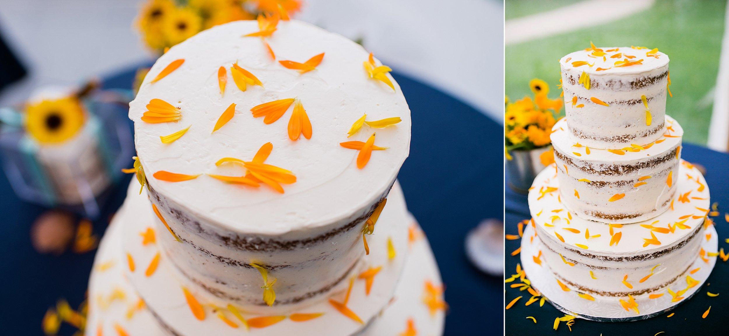 046 marthas vineyard wedding photographer todd danforth photography.jpg
