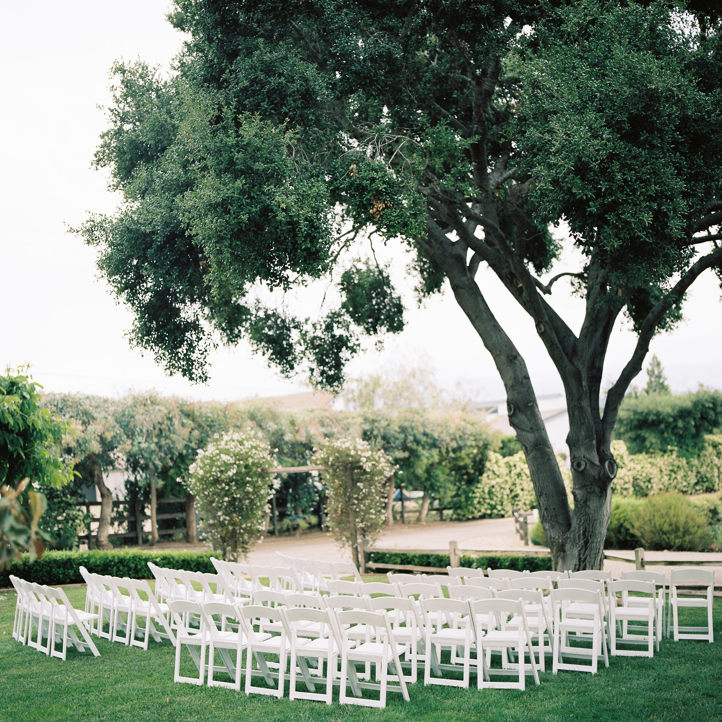 los angeles wedding photography film todd danforth photography