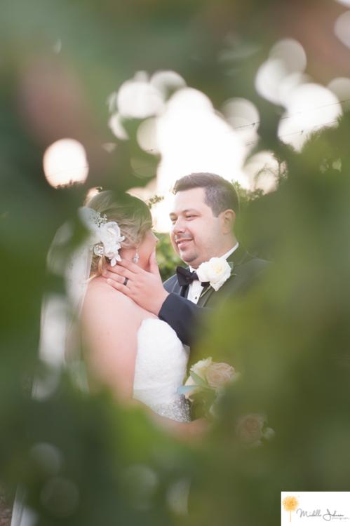 001wilsoncreekwineryweddingpictures.jpg