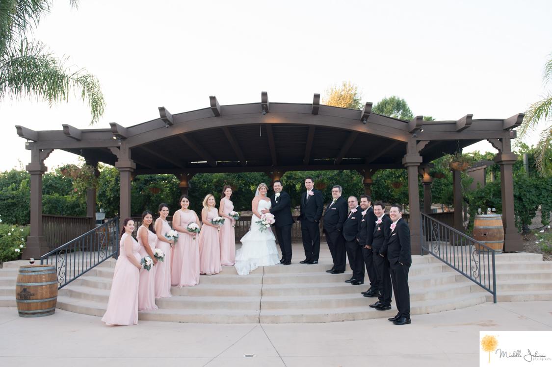 043wilsoncreekwineryweddingpictures.jpg