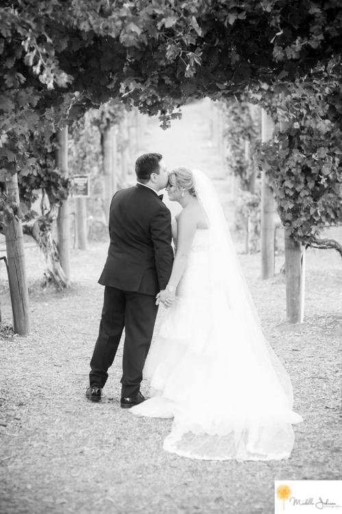 048wilsoncreekwineryweddingpictures.jpg