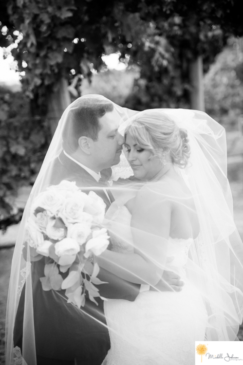 050wilsoncreekwineryweddingpictures.jpg