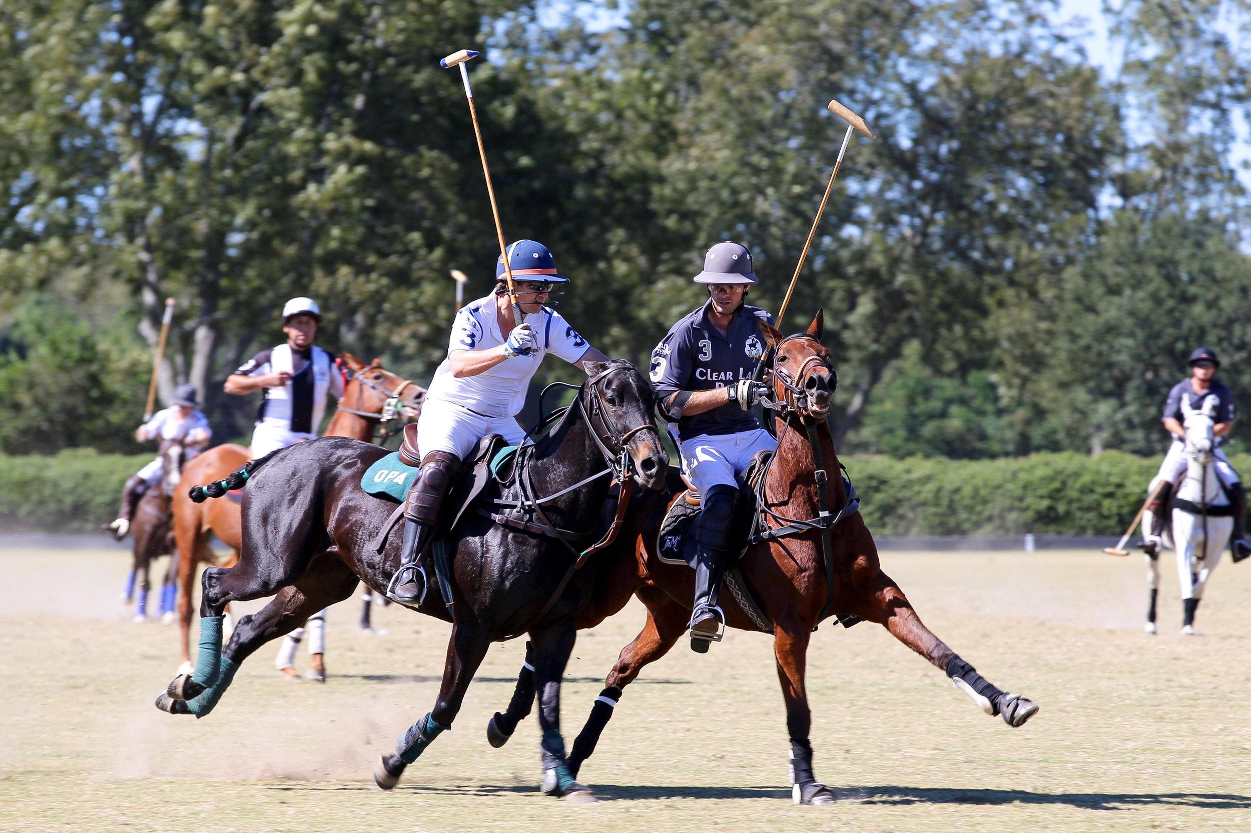 fashion blogger lcb style horse polo fall fashion (1 of 7).jpg