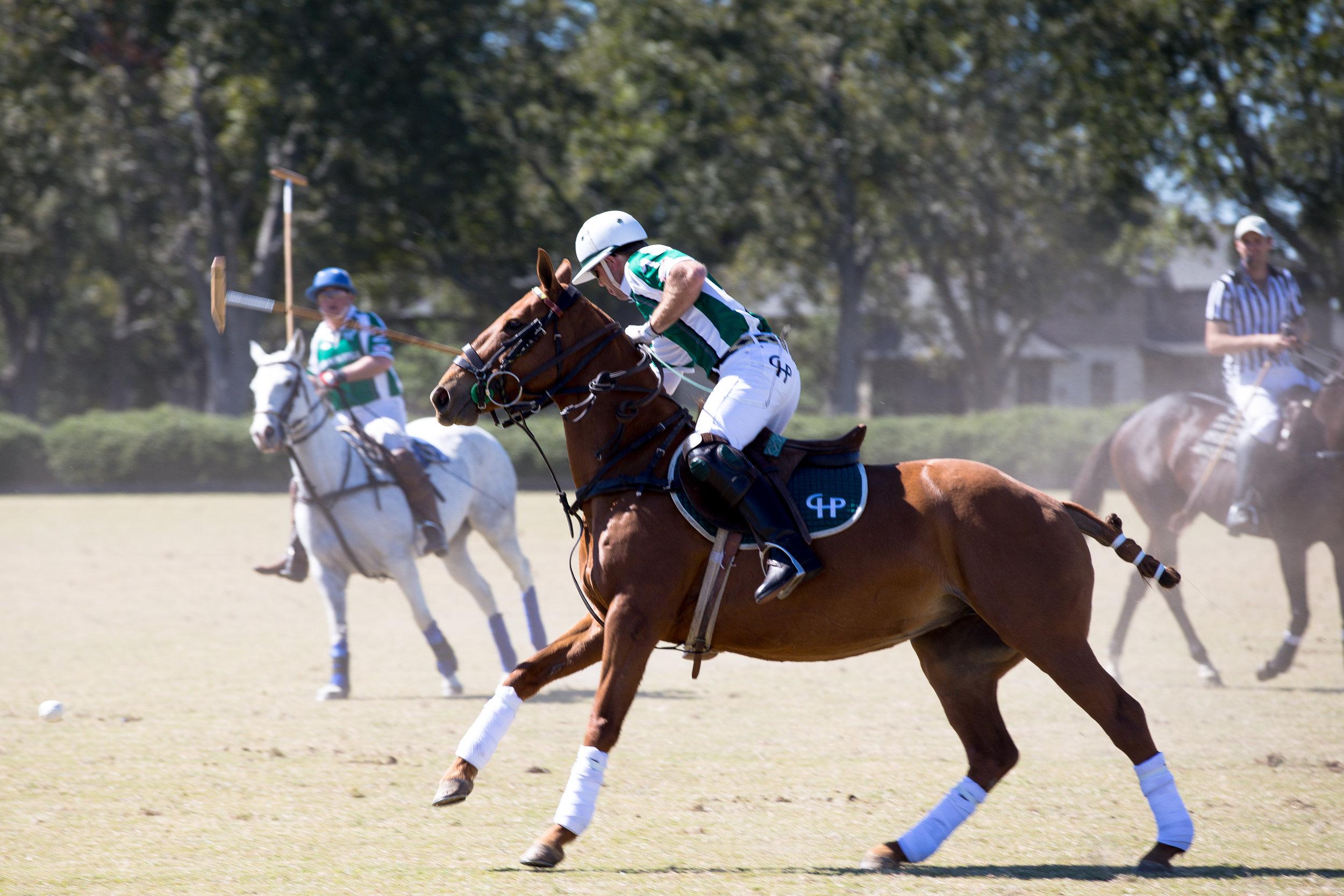 fashion blogger lcb style horse polo fall fashion (5 of 7).jpg