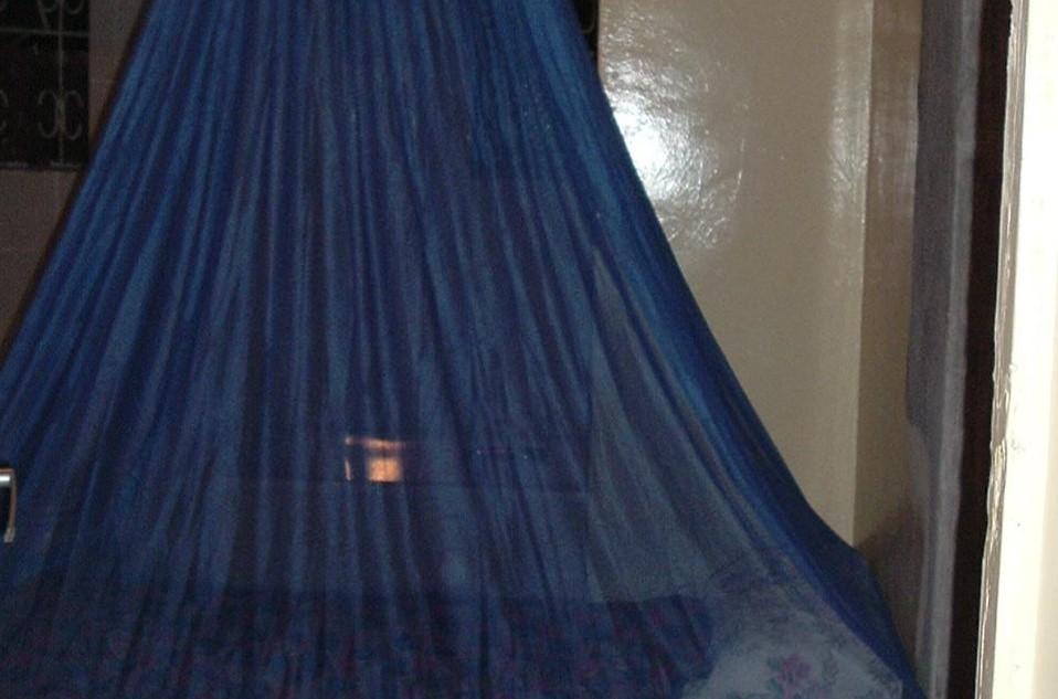 Mosquito Net Program – Cost Effective Prevention