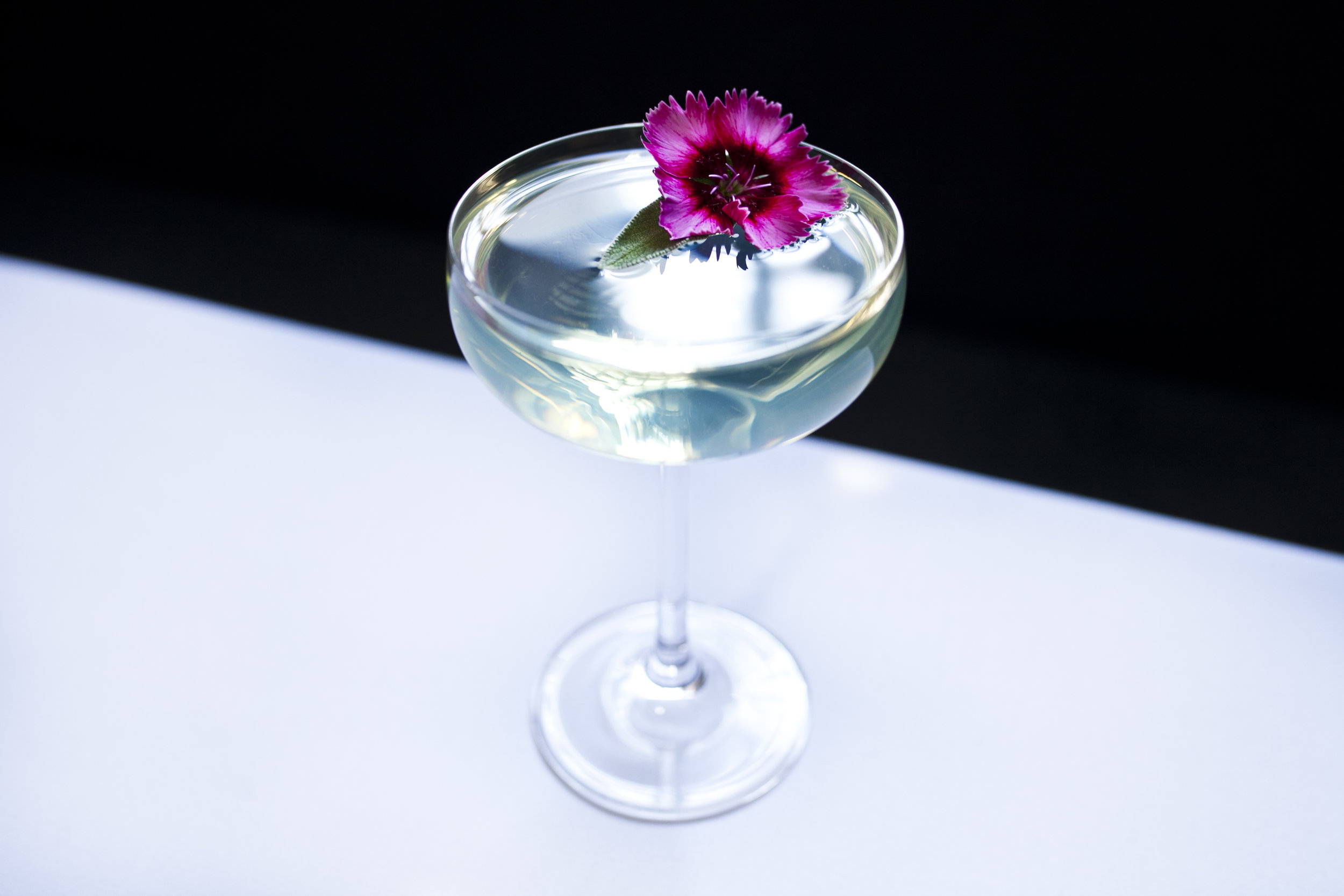 Photo: Sammy Faze Photography  The Cocktail
