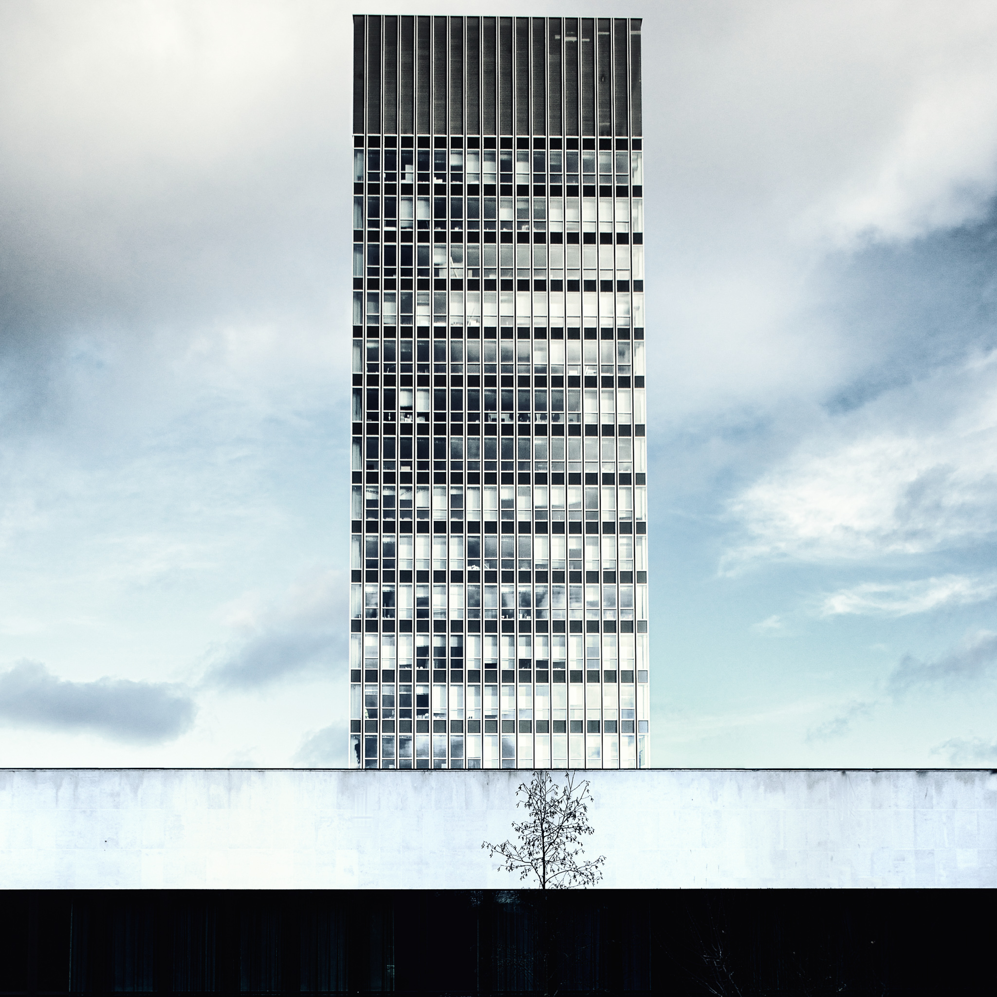 The Arts Tower, Sheffield. Dan Cook.