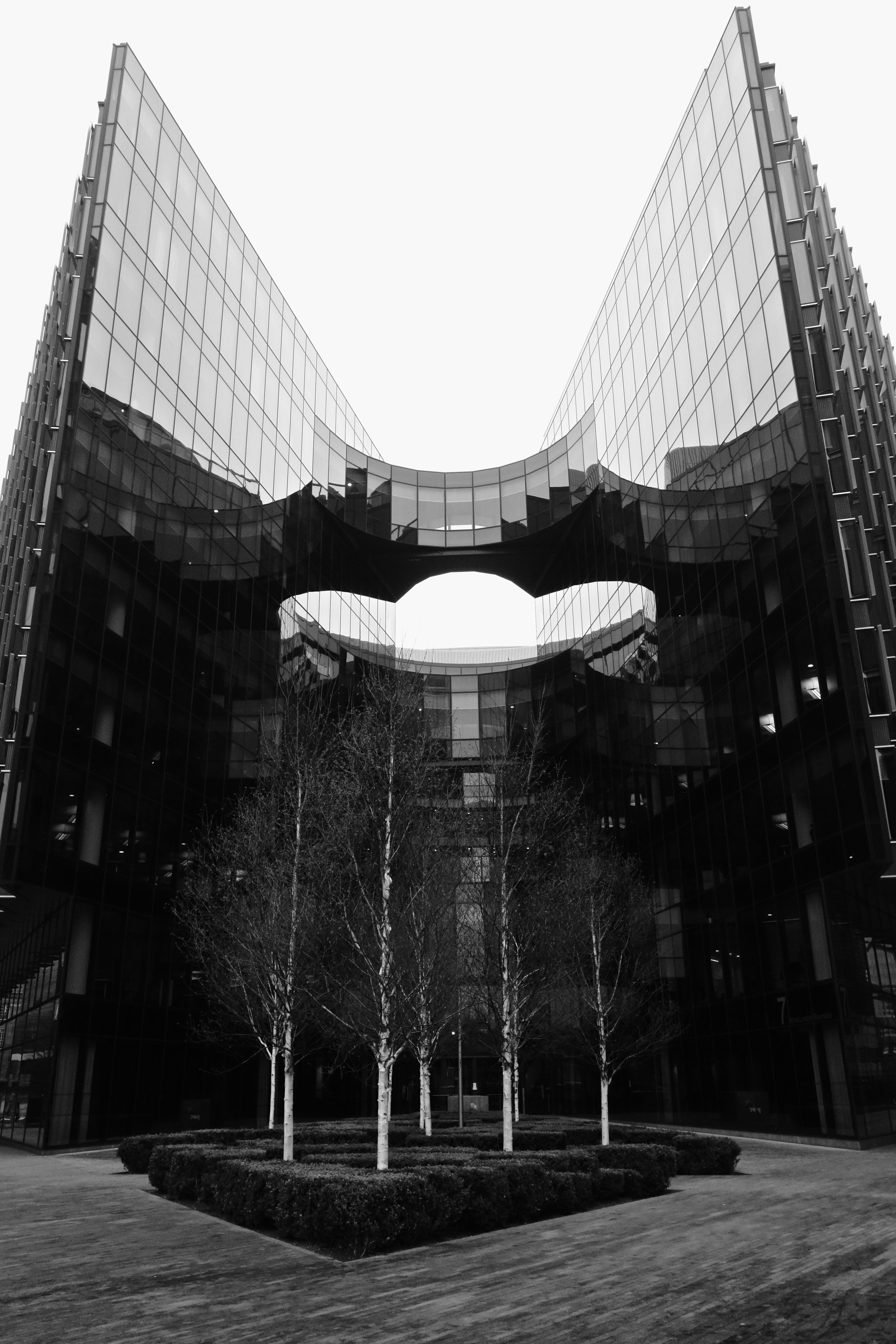 Squeezing Nature - The Price Waterhouse Cooper Building on Southbank London.