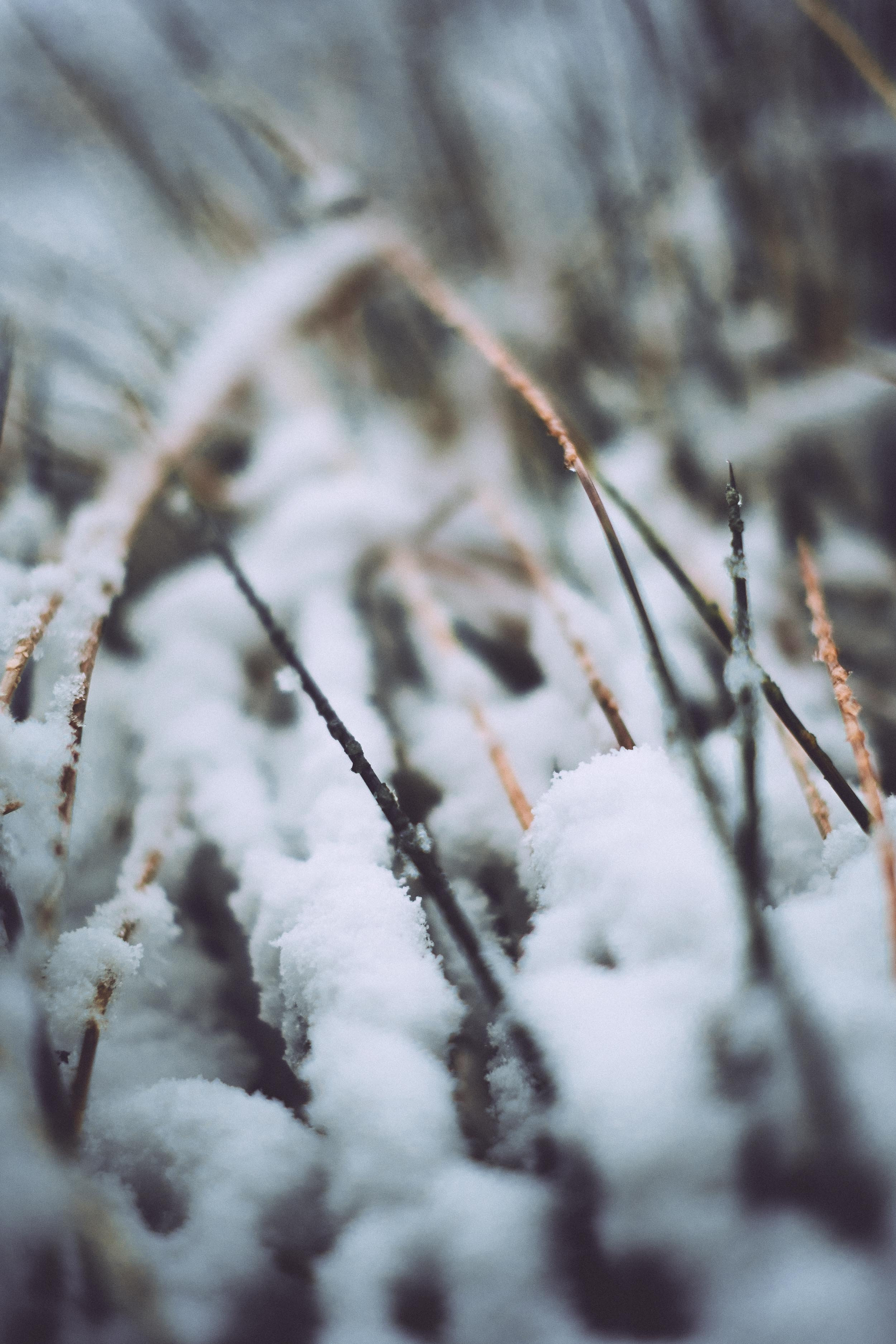 Winter on Win Hill 2017