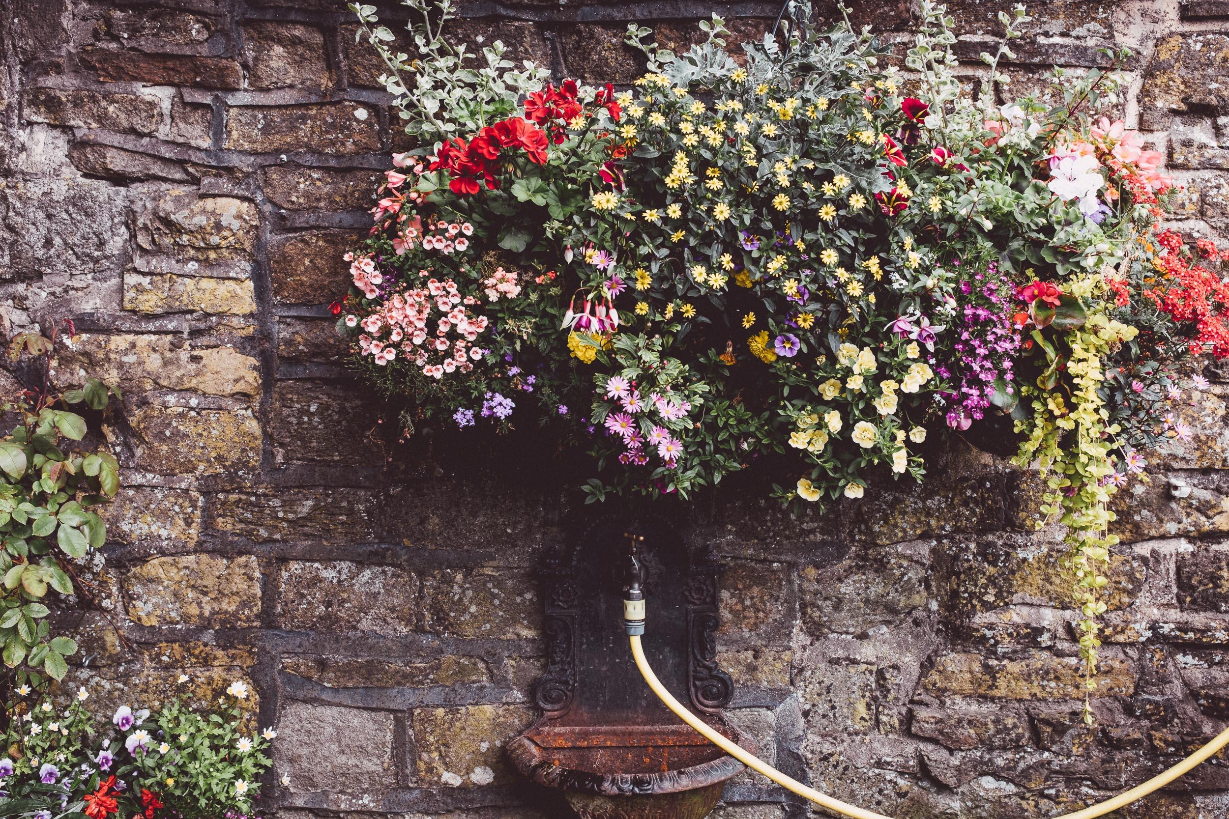 Barrel Inn flowers