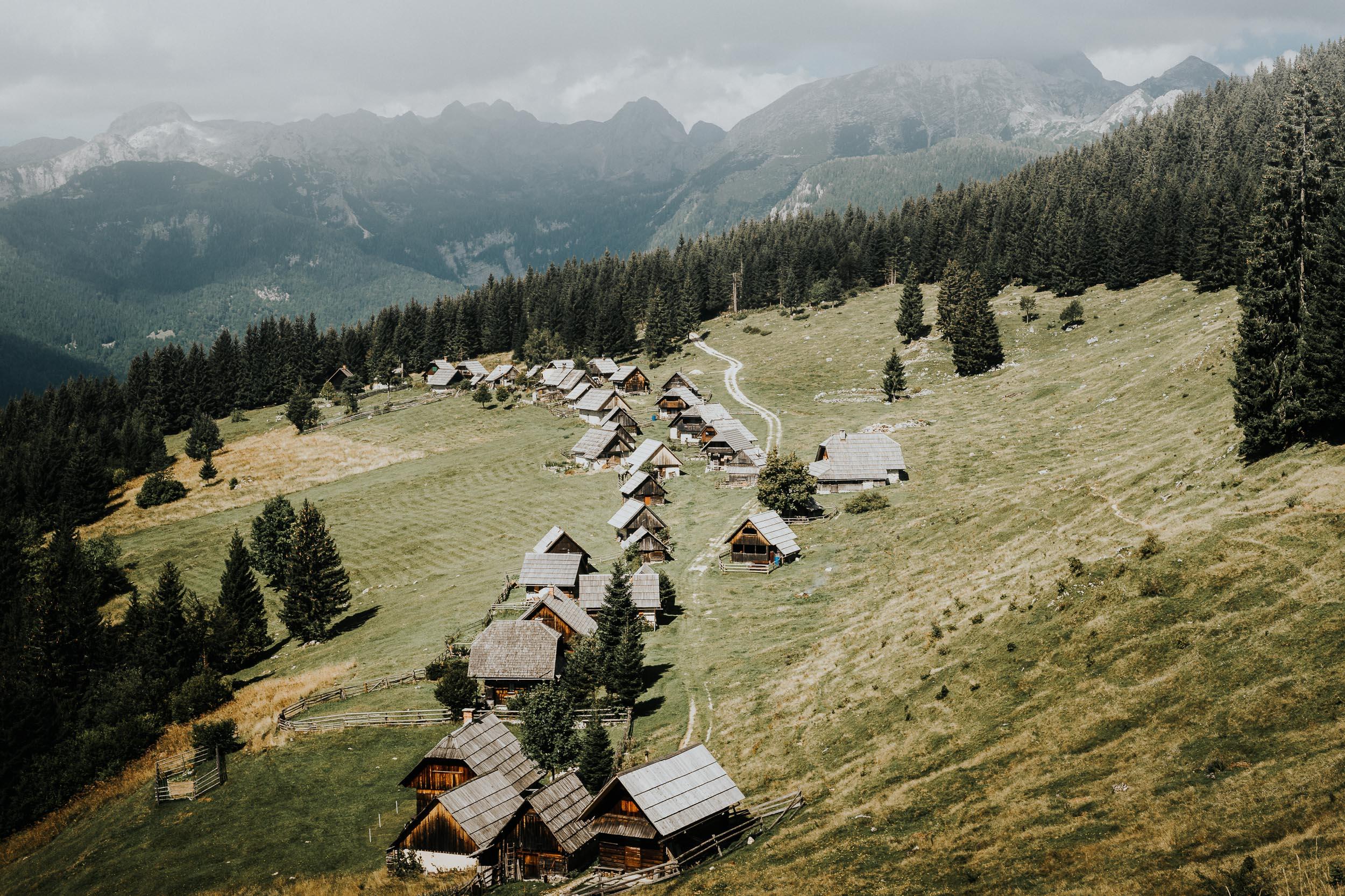 The Whole Planina