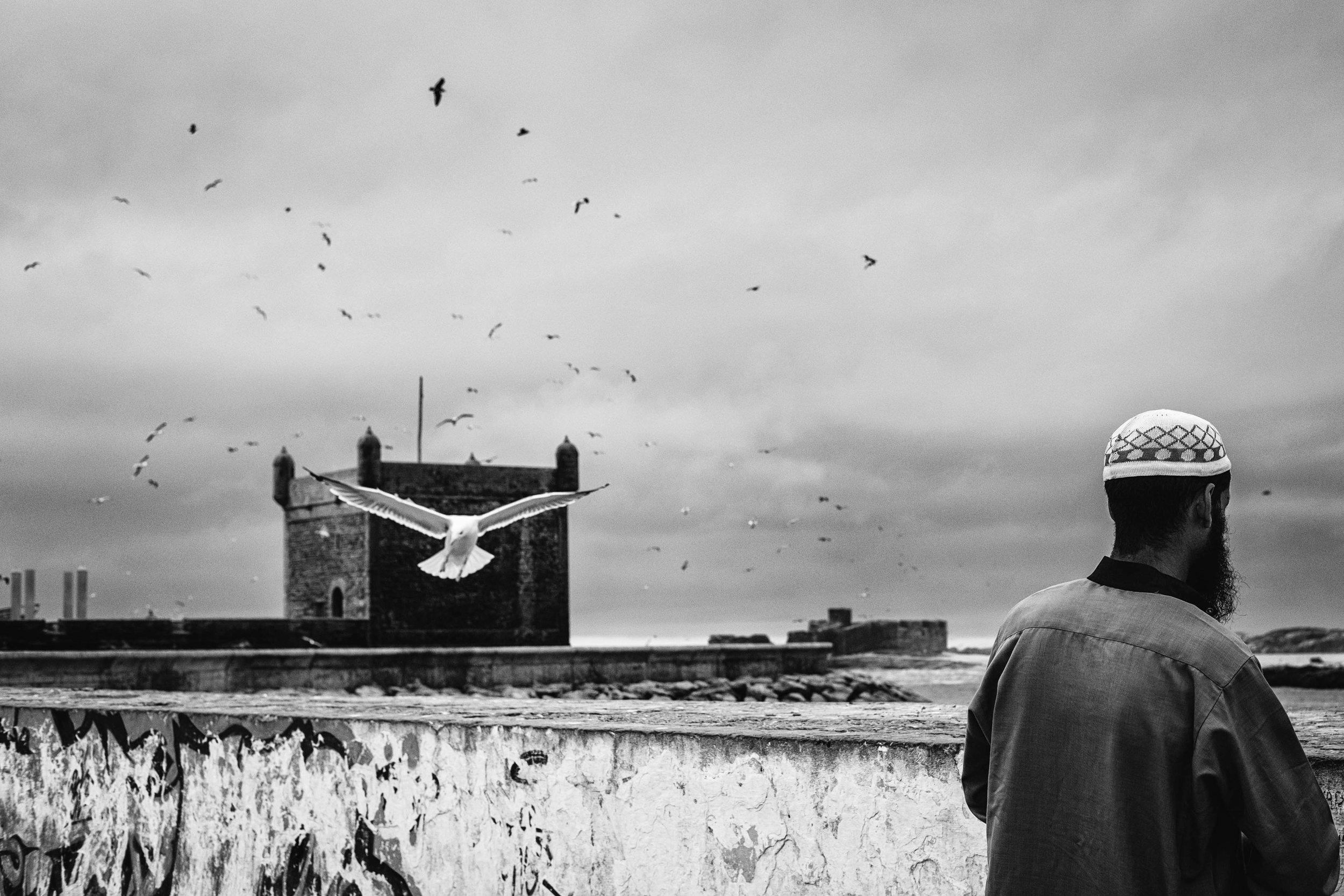 Jane Zhang - Essaouria Street Photography-15-2.jpg