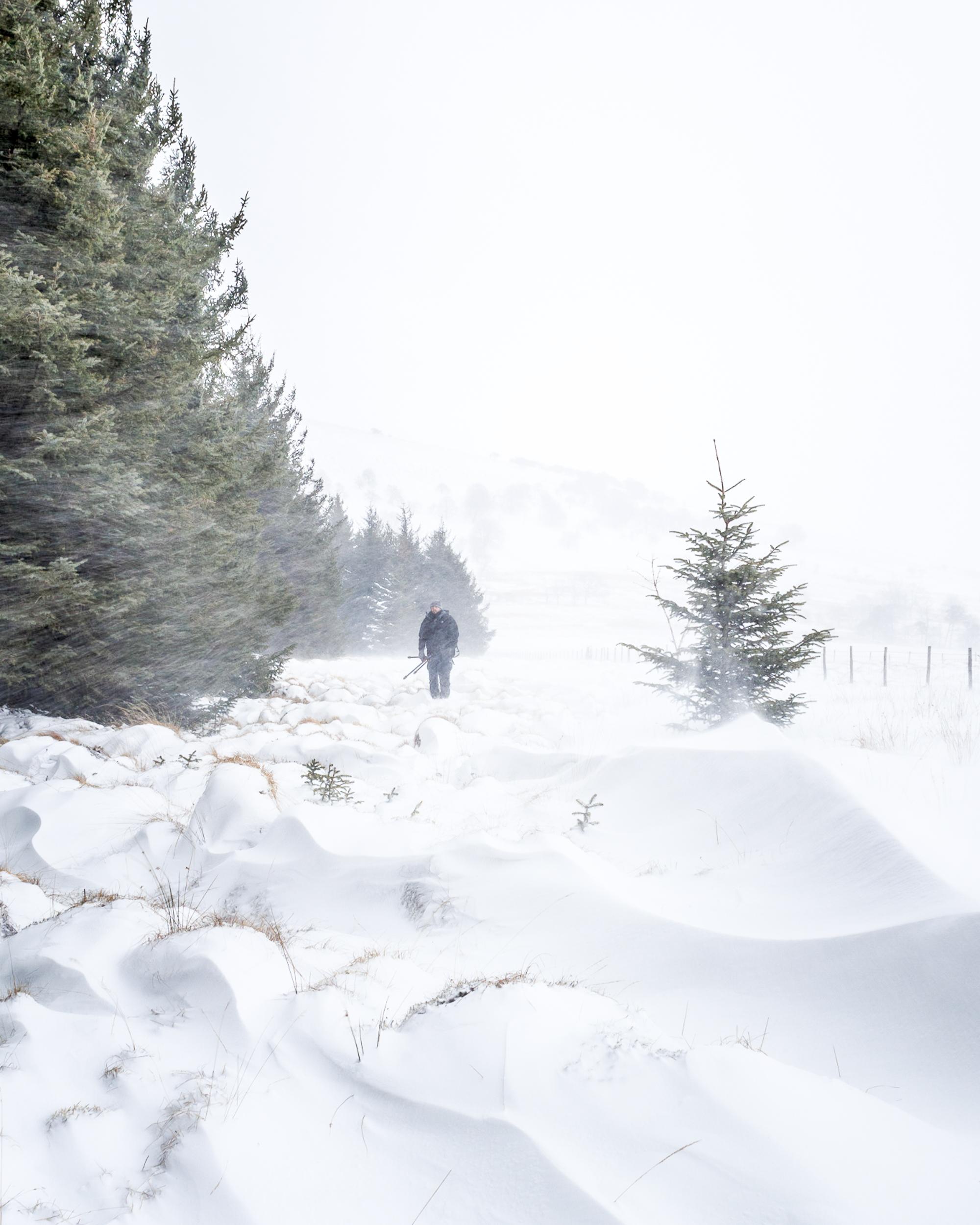 Snow_Day-17.jpg