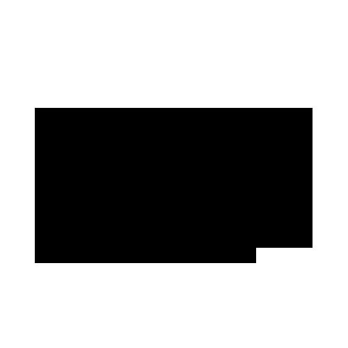 Pust logo clean transparent.png
