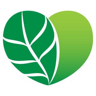dvf-logo-mark3-rgb.png