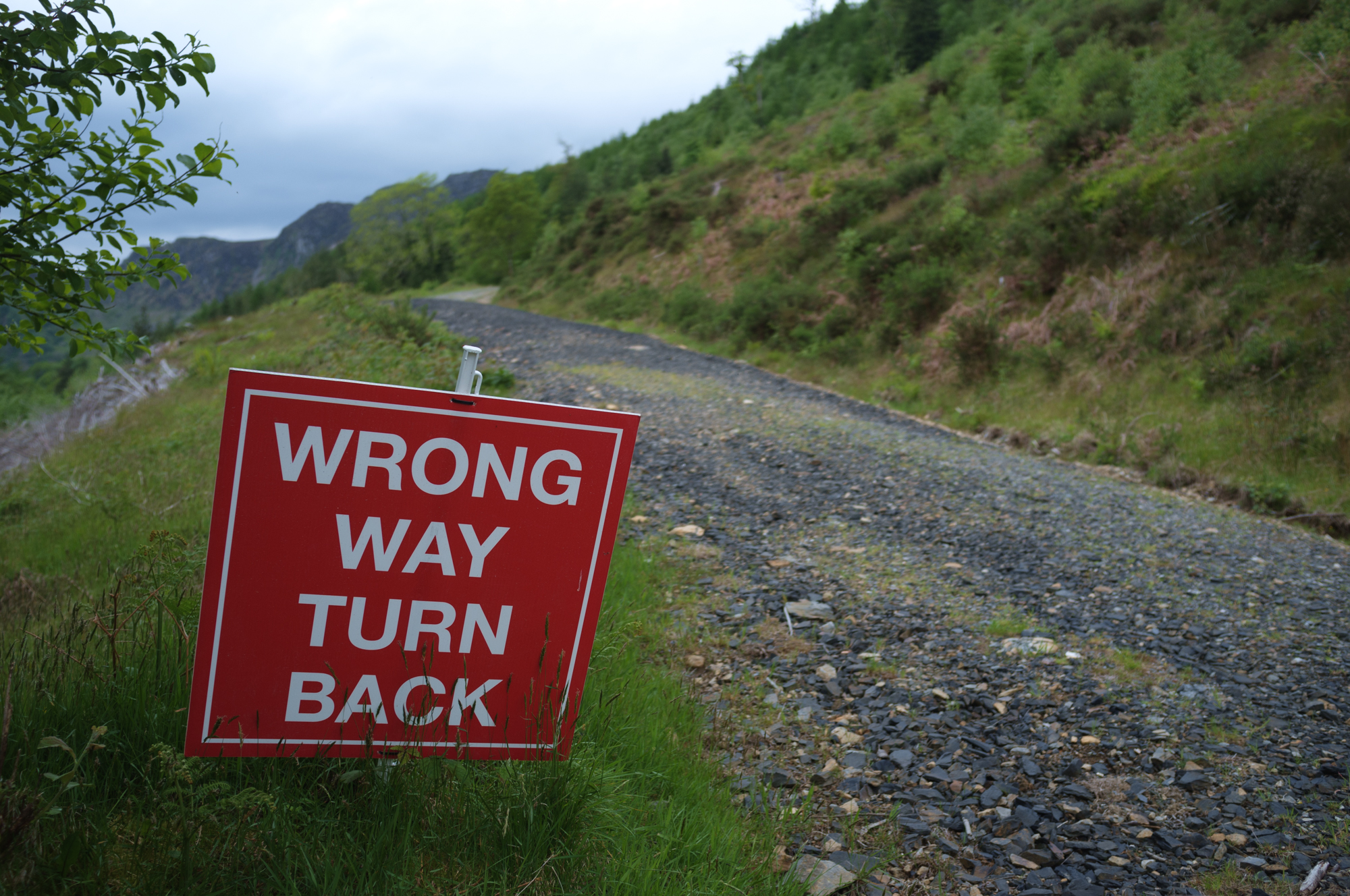 170522 Wrong Way.jpg