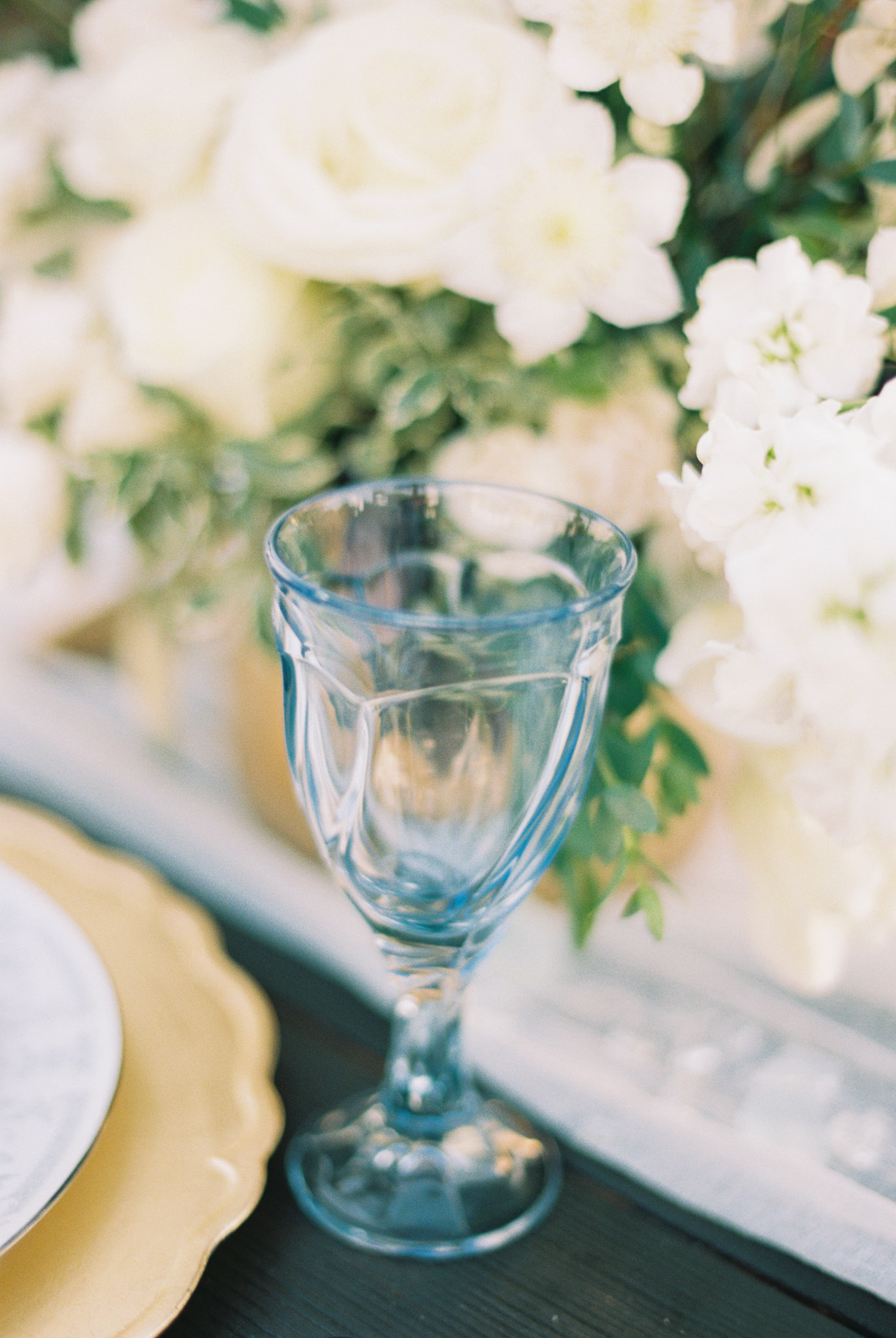 Tampa Colored Goblet Rentals