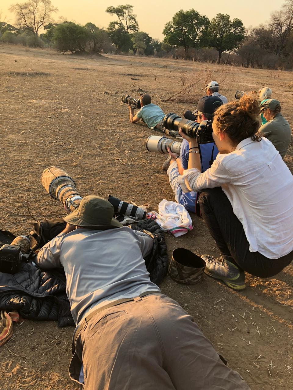 shooting in a pile of impala dung. Yum