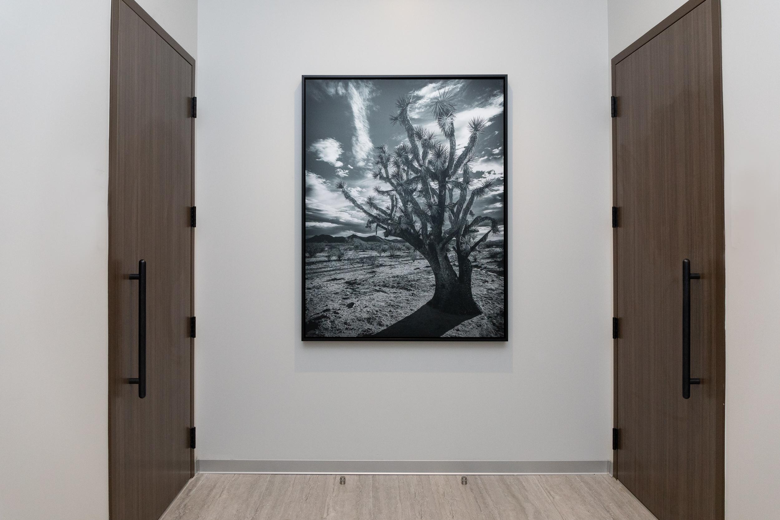 4' x 5' Photograph of US-93 on Metallic Paper by Jon Linton