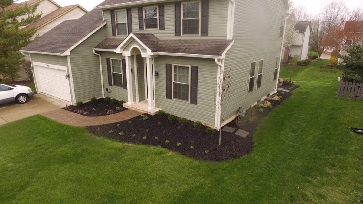 Mirise New Plantings