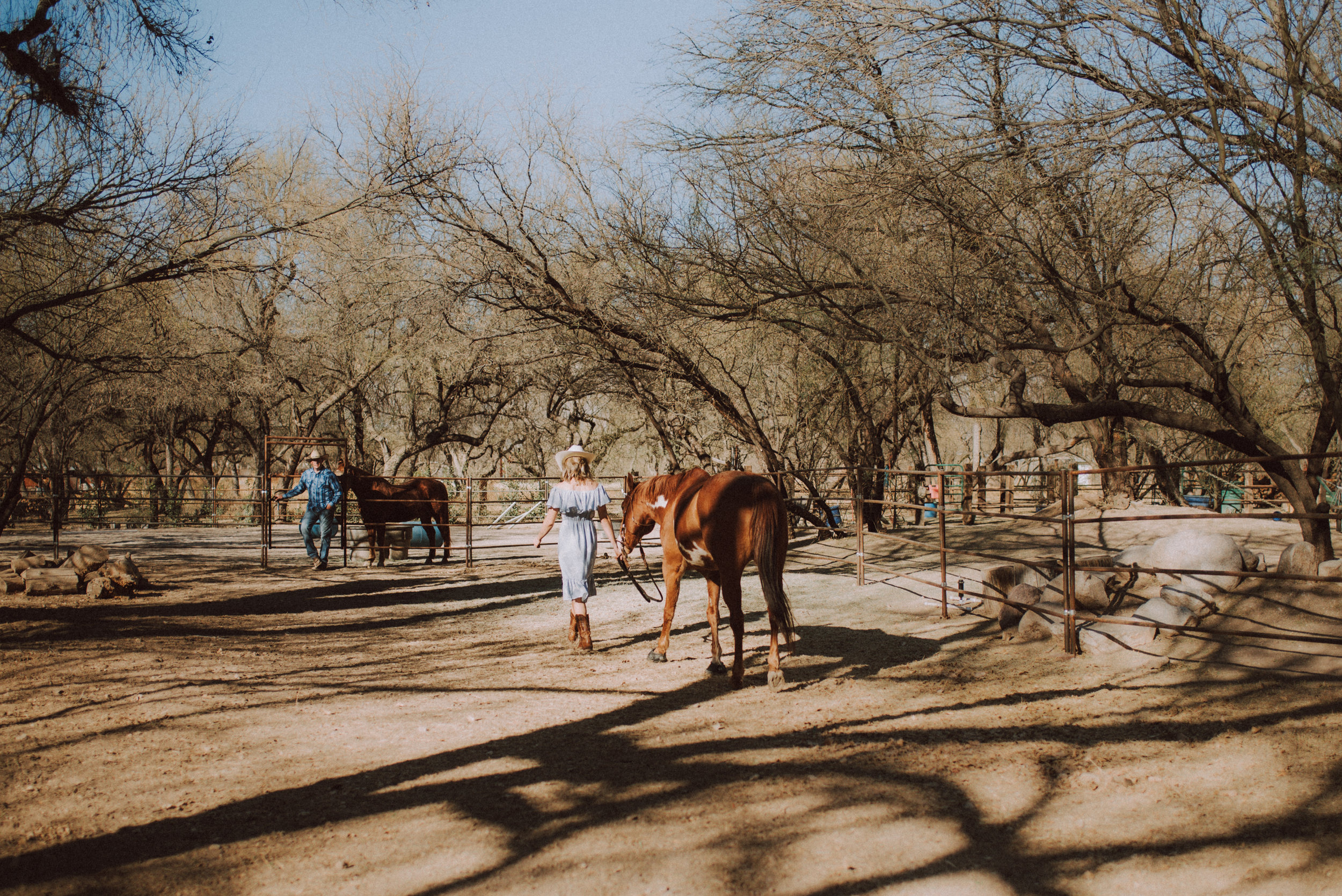 Tucson Lifestyle Photographer V Session-4174.jpg