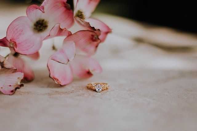 Detail shots just get me every time... 🌸 • • •  #destinationweddingphotographer #chasinglight #aisleperfect #destinationwedding #loveauthentic #loveintentionally #stylemepretty #weddingphotographer #fineartphotographer #arizonaelopementphotographer #engaged #engagementphotographer #tucson #fineartweddings #gatheredstyle #howheasked #huffpostido #justengaged #ohwowyes #soloverly #tucsonphotographer #thehappynow #clickinmoms #weddingchicks #weddingforward #weddinginspo #weddingphotographers #unraveledacademy #tucsonweddingphotographer #tucsonelopementphotographer