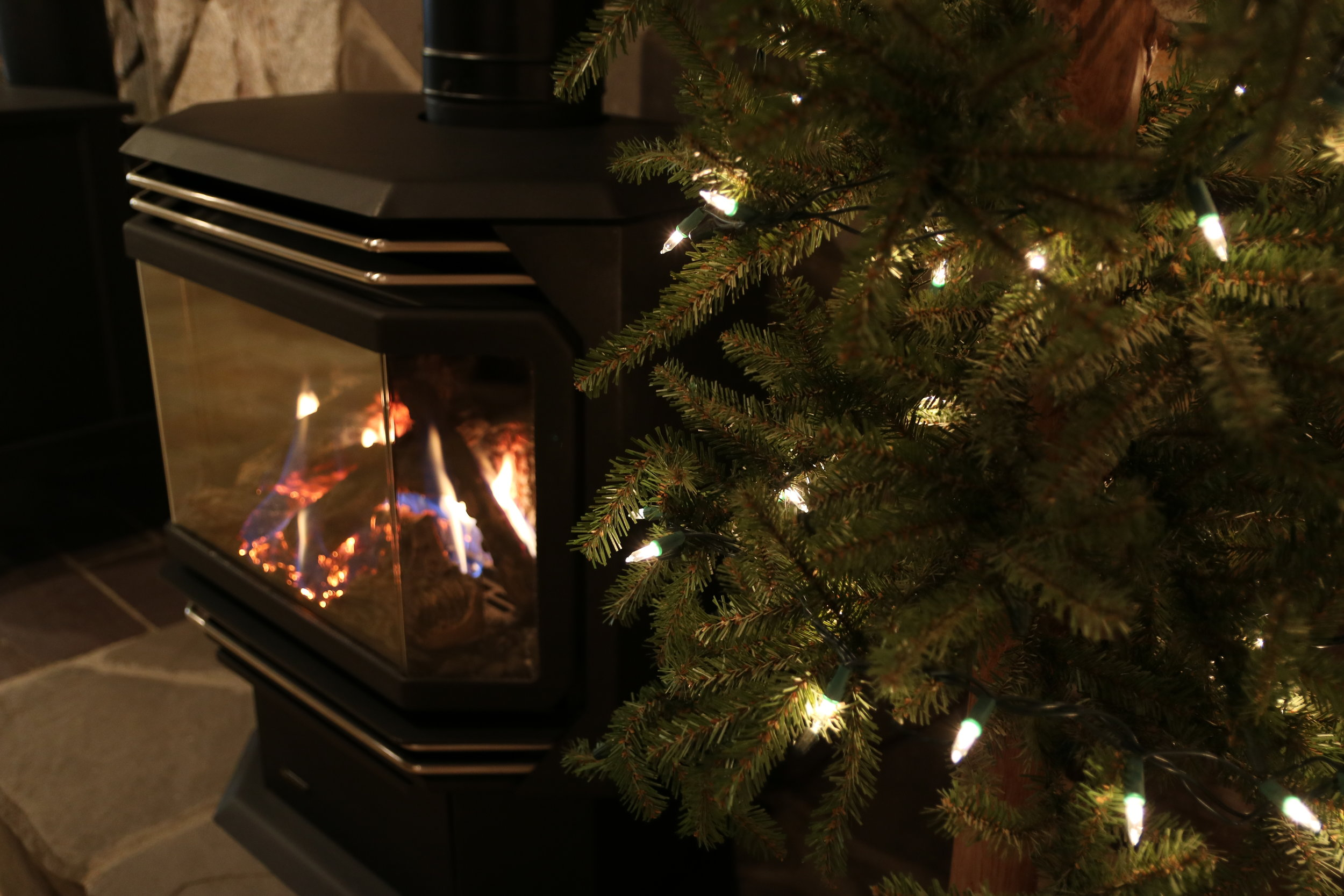 Regency U39 Close up Christmas Tree.jpeg