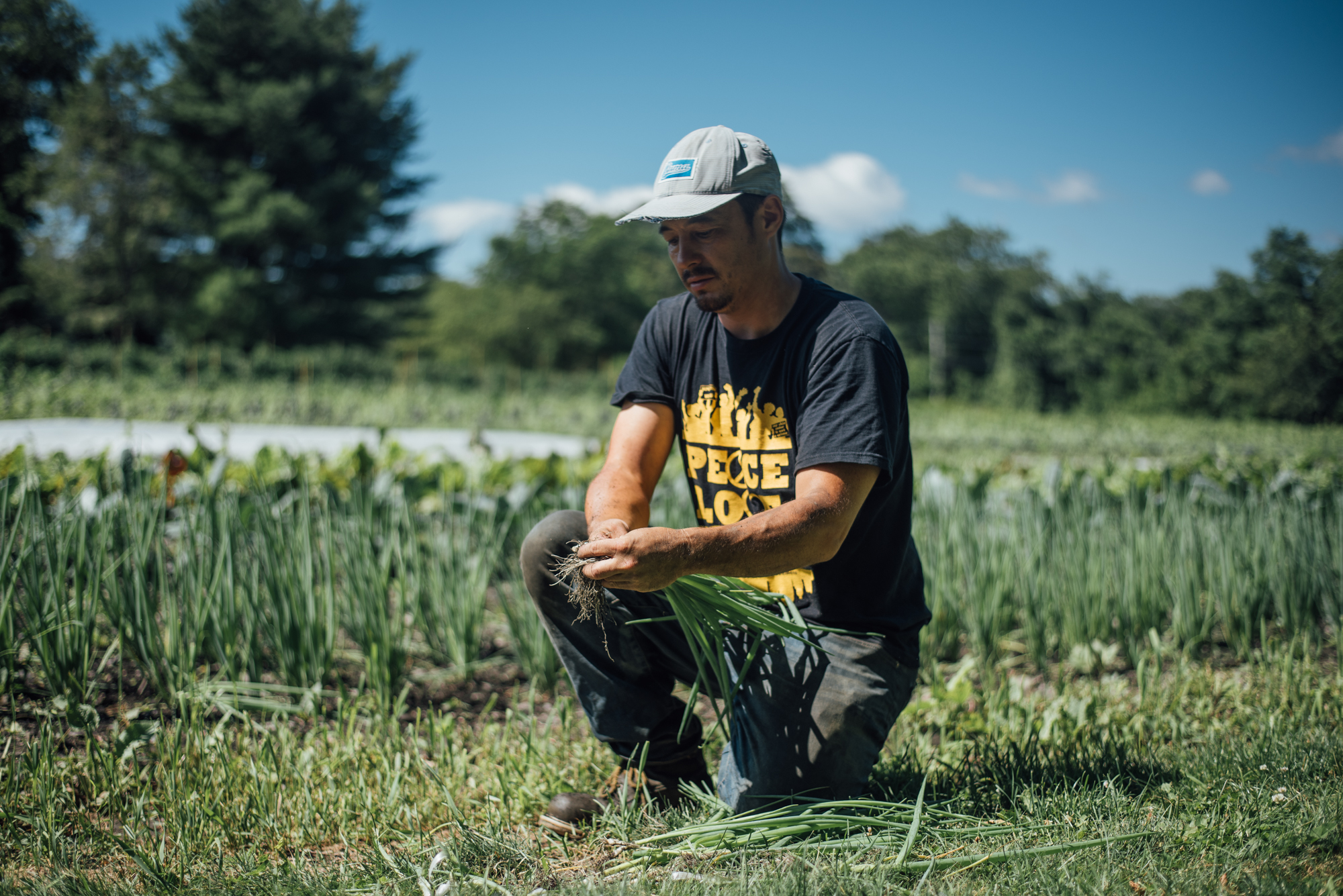 Kohei Ishihara is the owner of Movement Ground Farm. The seven-acre farm is located on the coast of Rhode Island. He wants to start a program on the farm where elder refugees can work alongside the next generation. Photo by Ash Ngu.