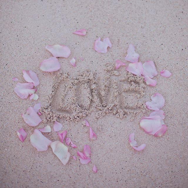 🐚 L💗VE  Happy Valentine's Day  #museroom #kailua