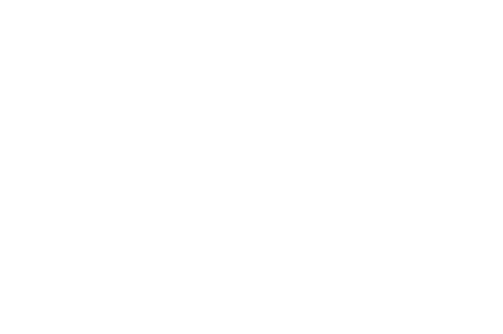 Winner of the - US Songwriting Award - 2019.png