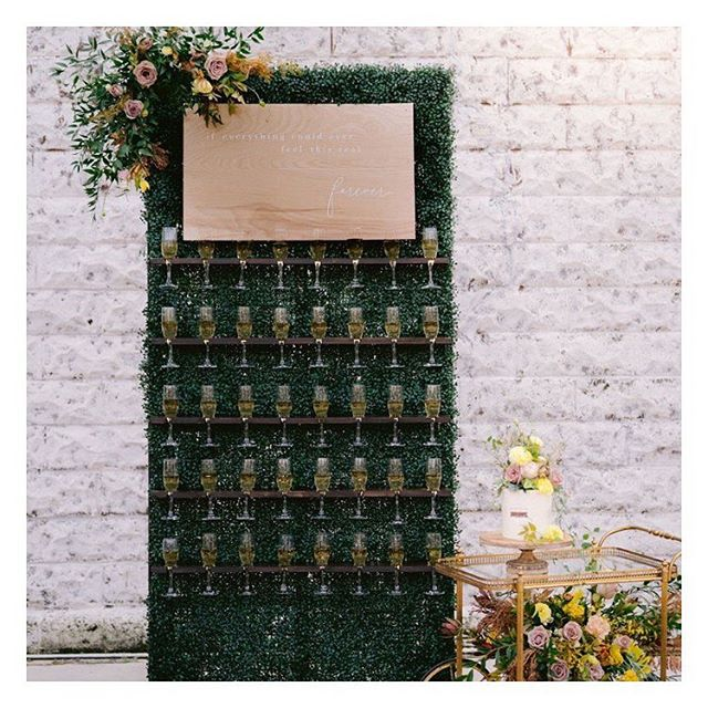champagne walls   flower walls