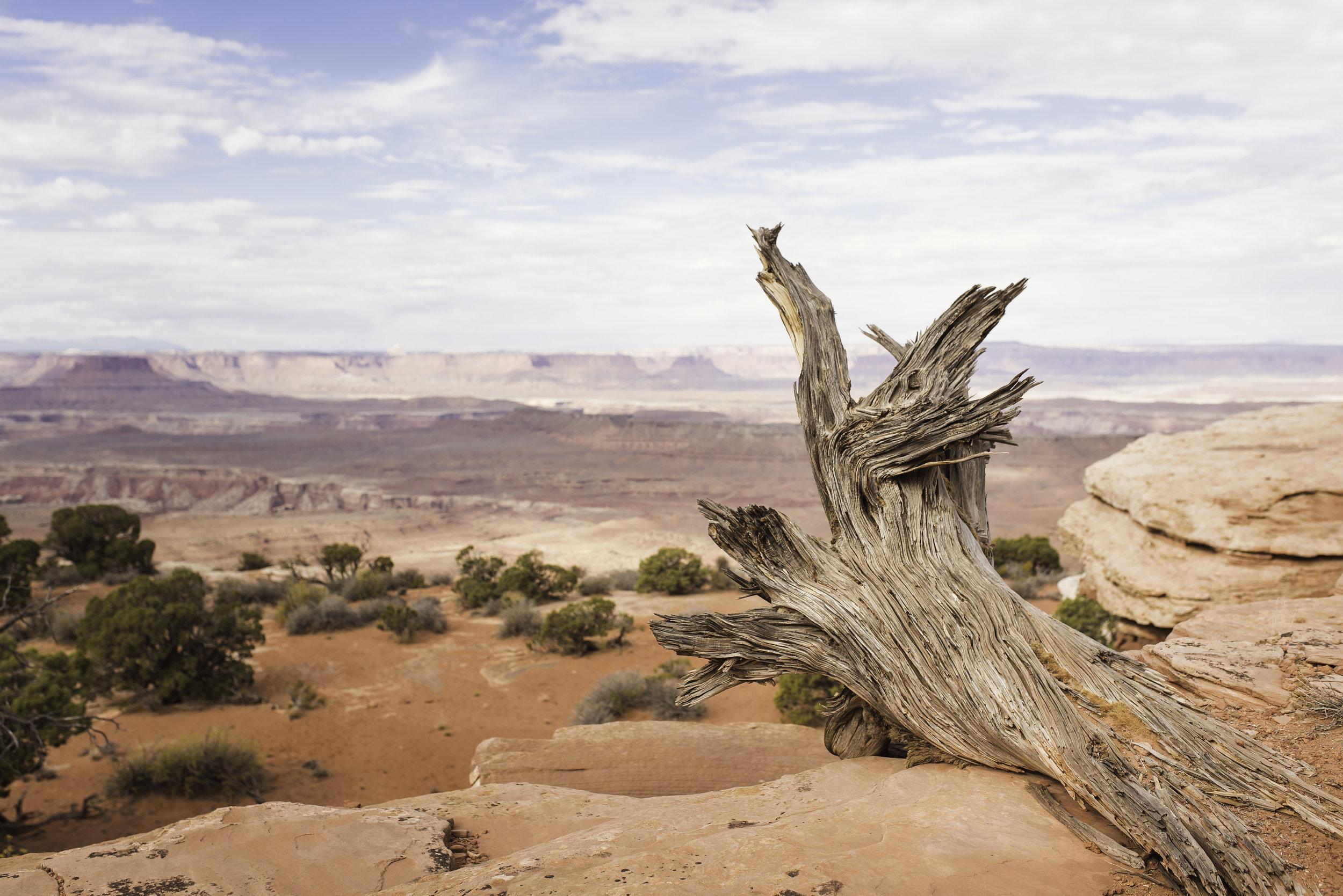 Moab, UT-938.jpg