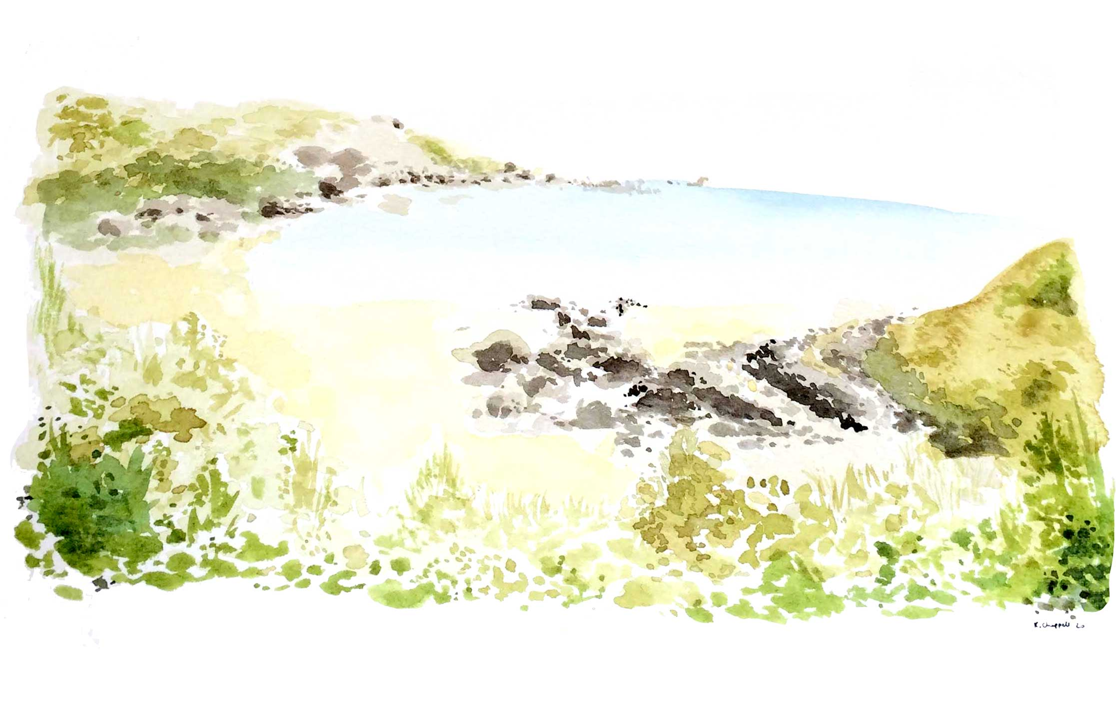 coldingham-sands-wedding-venue-live-painting-katie-chappell-northumberland.jpg