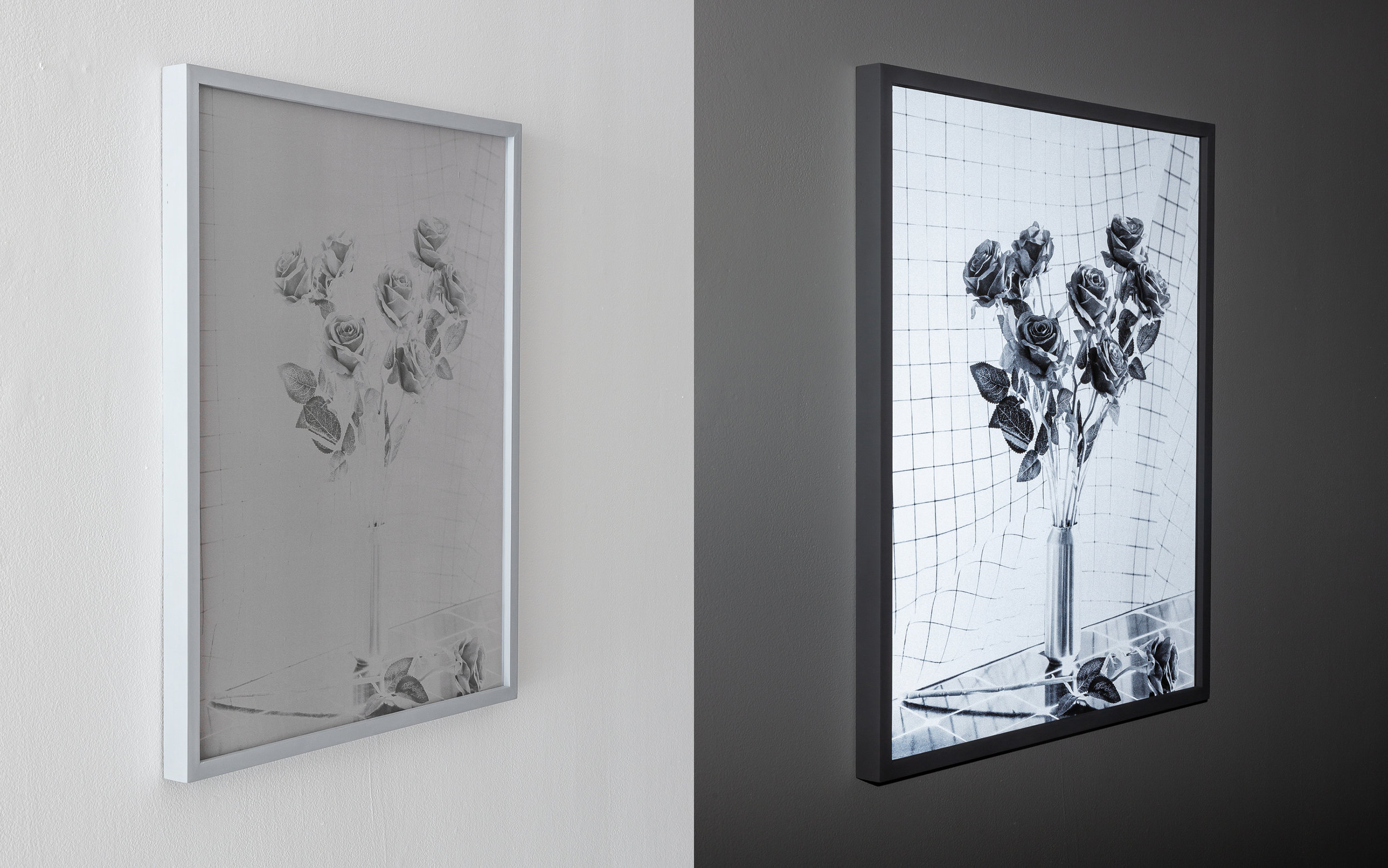 Patrick Harkin_Roses on Grid (Early Warning System)_Ultraviolet Print on Anti-Photographic Fabric_25 x 302019_.jpg