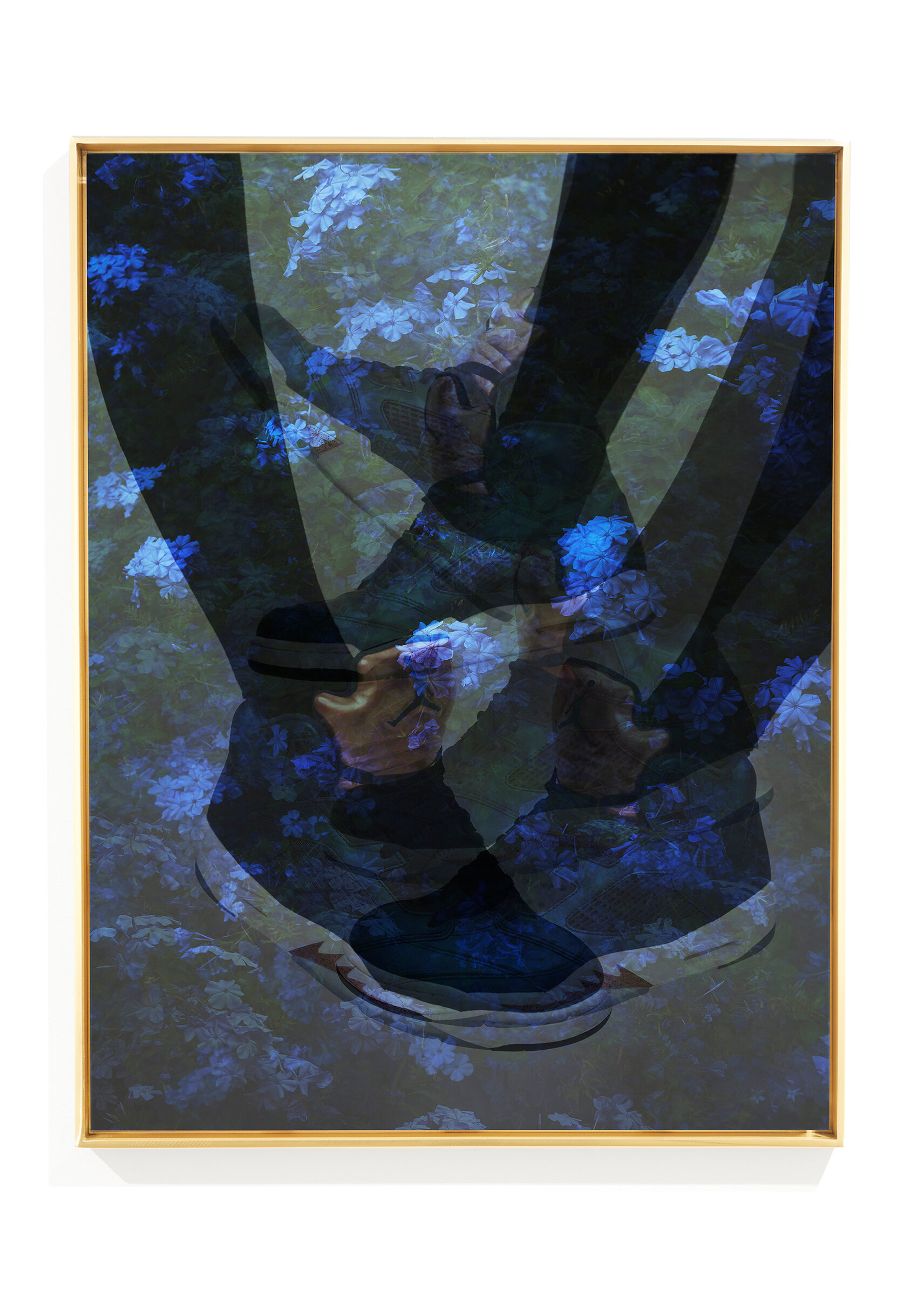 ClampArt_Joseph-Desler-Costa_AirJordanPlumbago2_2017_Dye-Sublimation-on-Aluminum-with-Polished-Brass-Frame_28x21inches-Edition-and-price-TBD.jpg