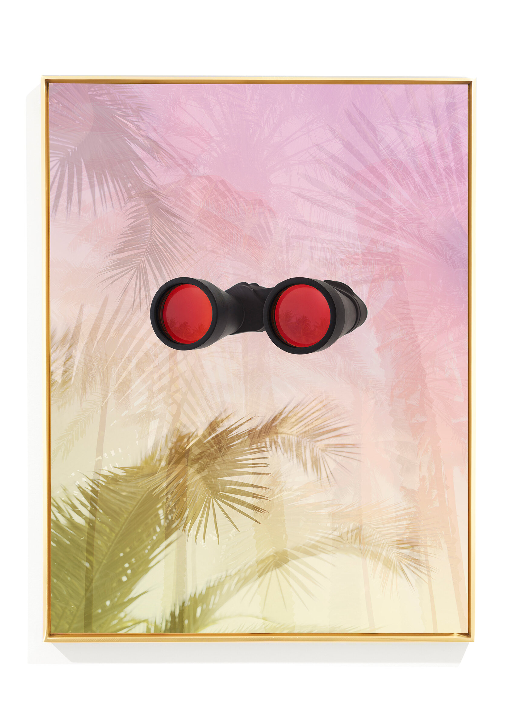 ClampArt_Joseph-Desler-Costa_BinocularTropical_2017_Dye-Sublimation-on-Aluminum-with-Polished-Brass-Frame_28x21inches-Edition-and-price-TBD.jpg