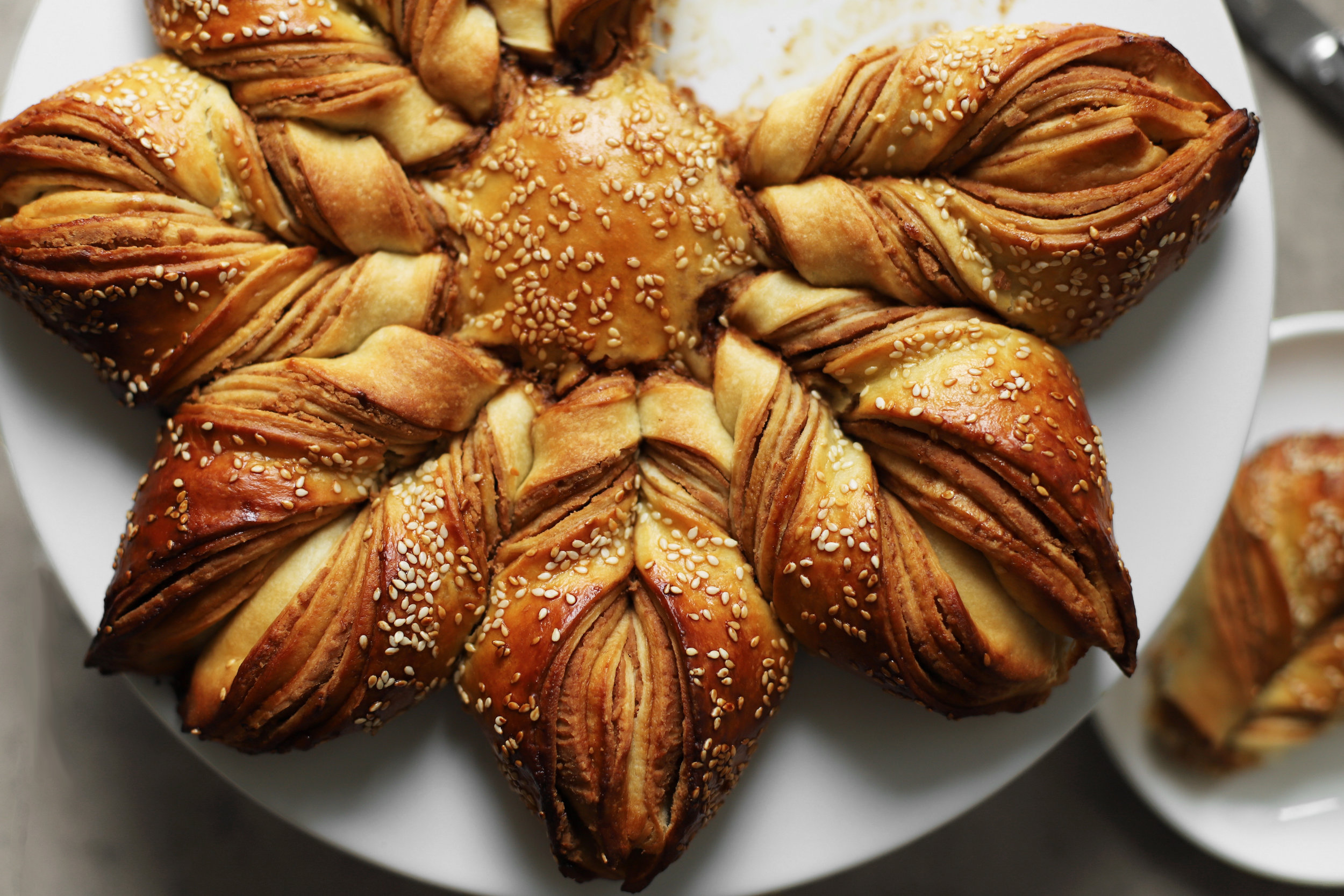 bake for syria cookbook