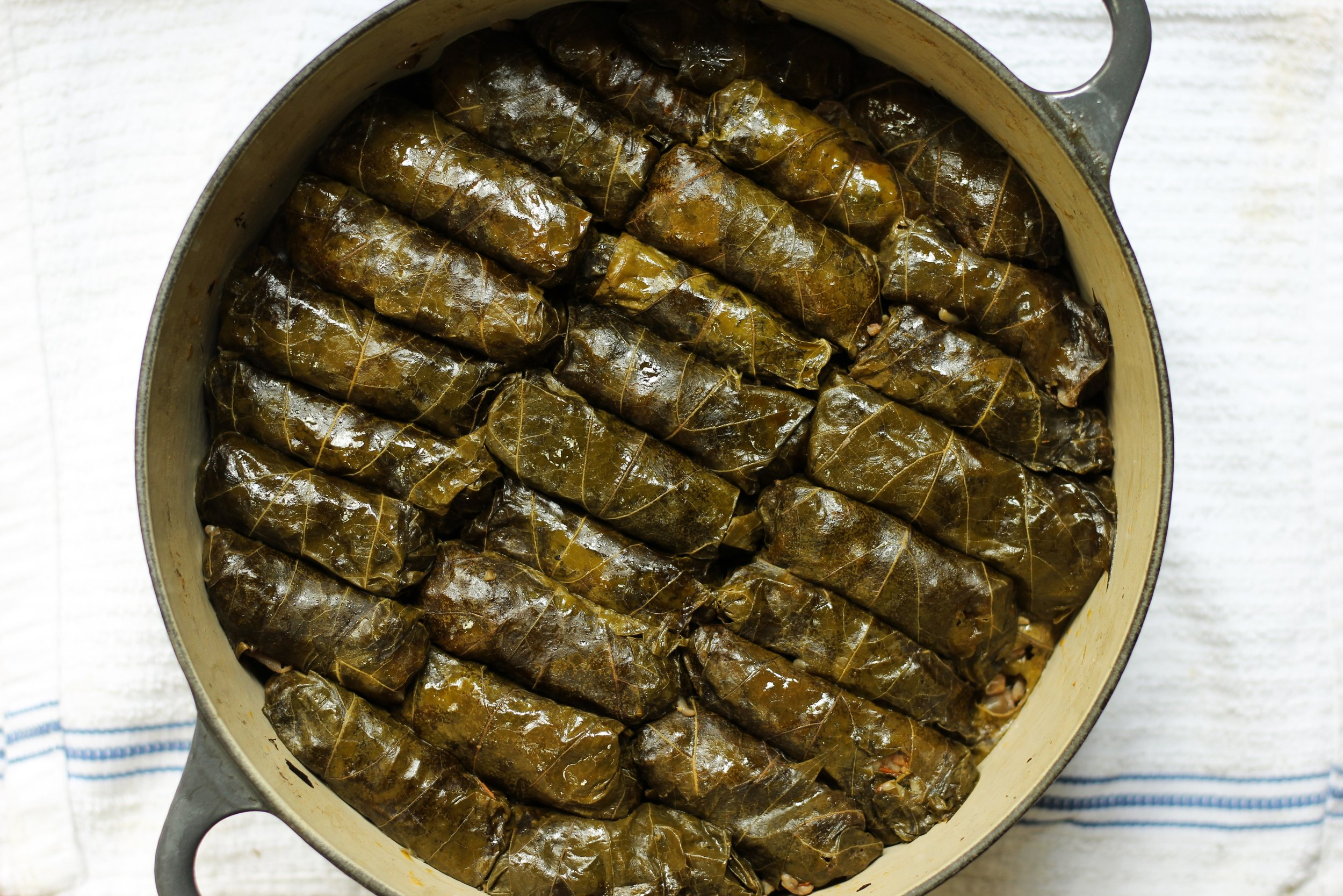 """Prakh'it soma (vegan stuffed grape leaves)    Most Assyrian foods have vegan versions, which we call  soma , which means """"suitable for fasting."""" Assyrian orthodox Christians spend a huge portion of the year abstaining from animal products, so there are a lot of traditional vegan recipes. This one is my favorite—vegan stuffed grape leaves, made with lots of herbs, walnuts, mushrooms, rice, and tomato."""