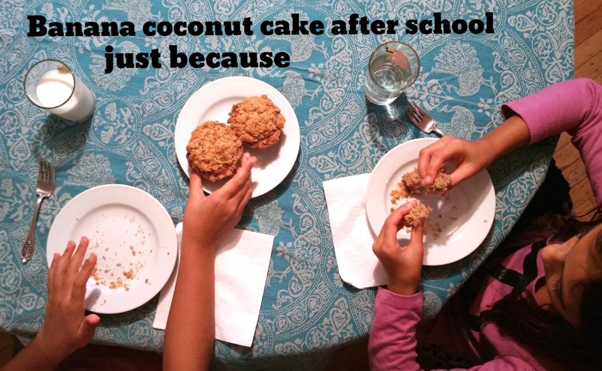 Banana Coconut Crumb Cake