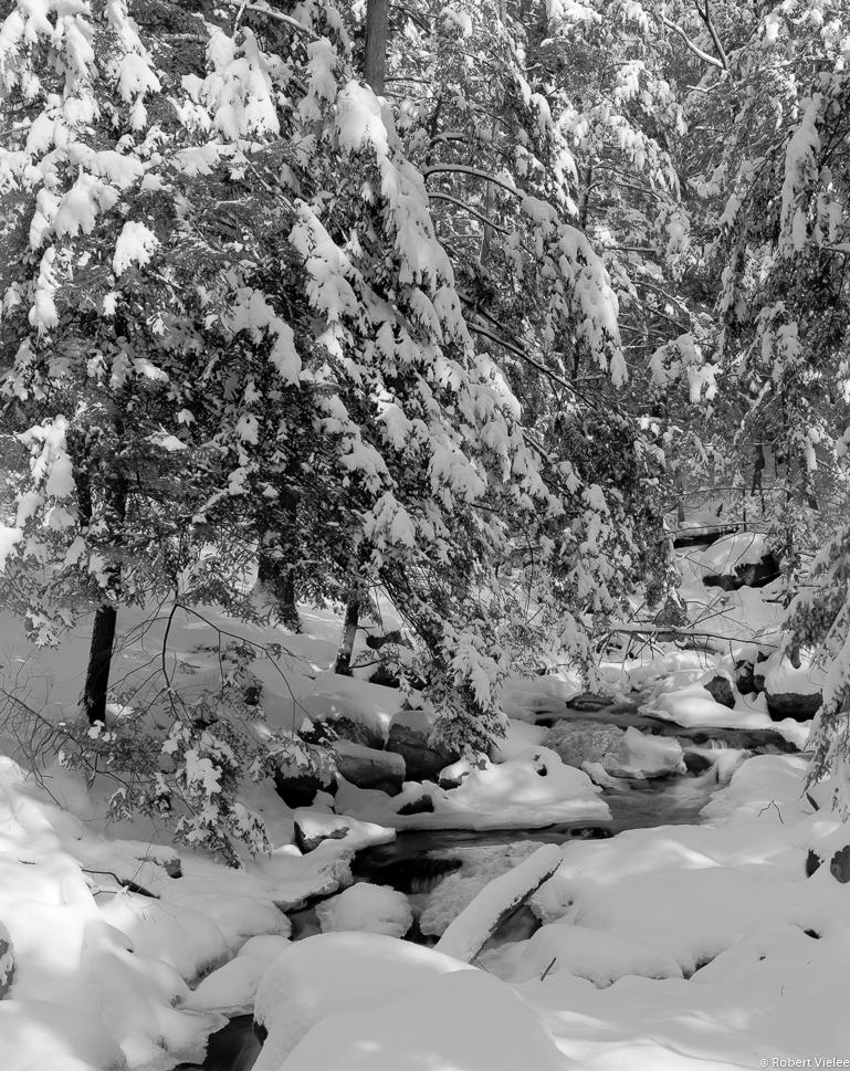 Winter White Small Stream