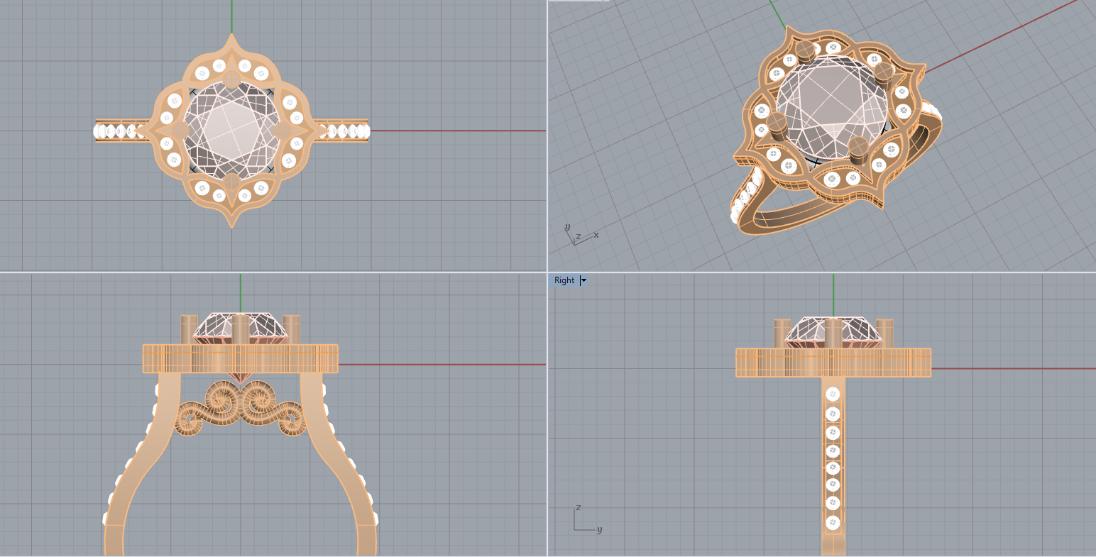 This is a CAD image of a custom ring!