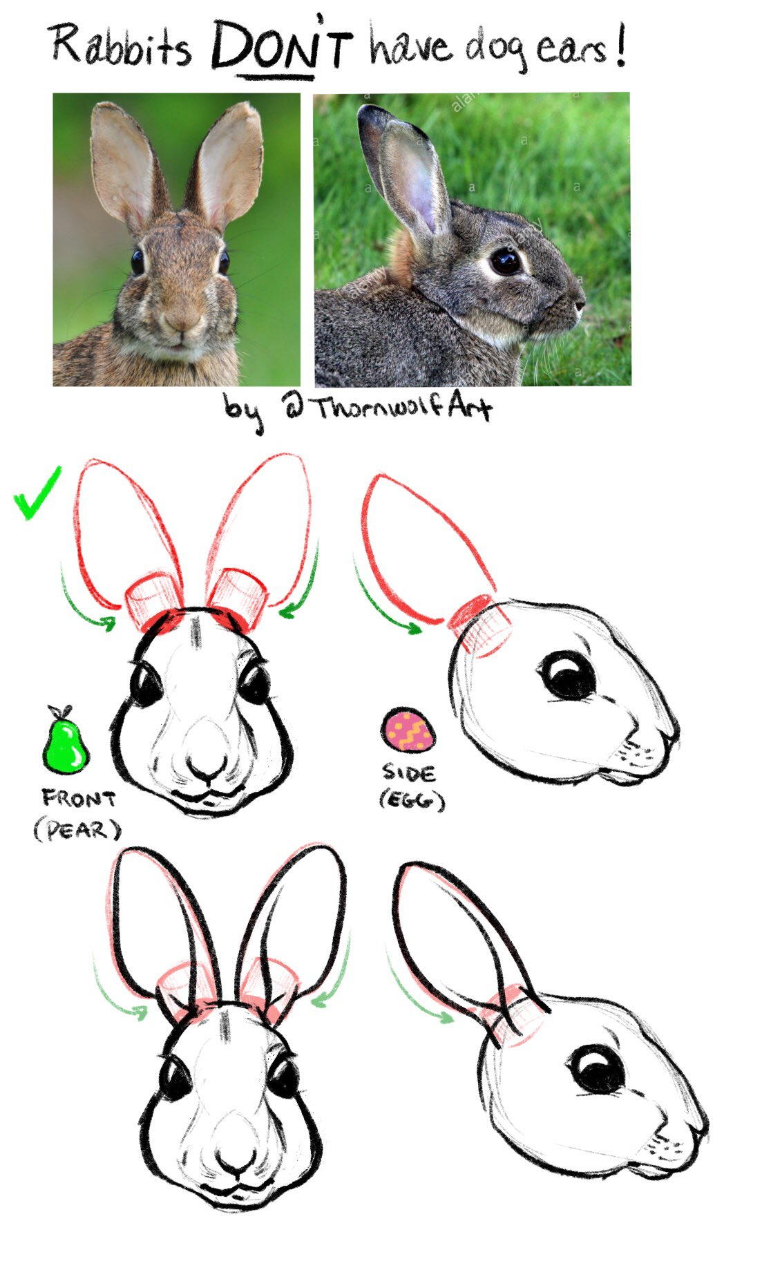 Rabbit ears have more complex shapes in them than just triangles, but it doesn't mean they have to be difficult.