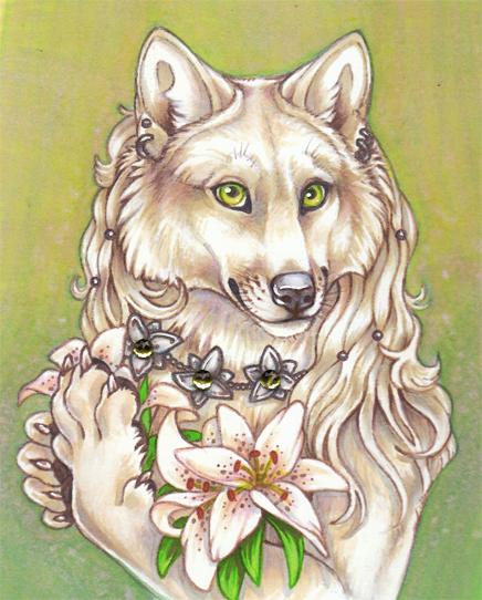 Lily White.jpg