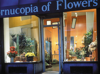 CORNUCOPIA FLOWERS<strong>NEW YORK, NEW YORK</strong>