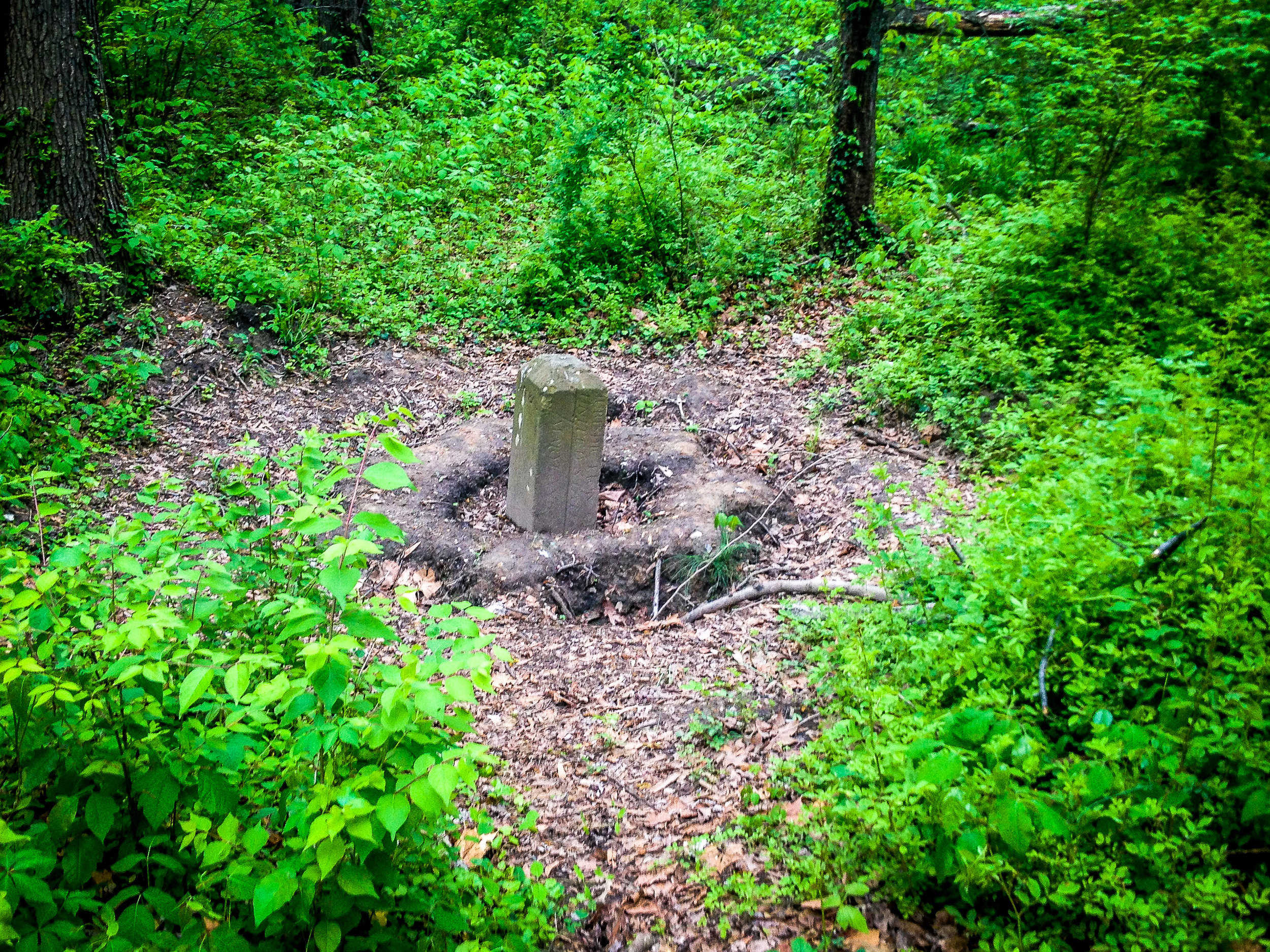 The East Stone - Off in the Woods