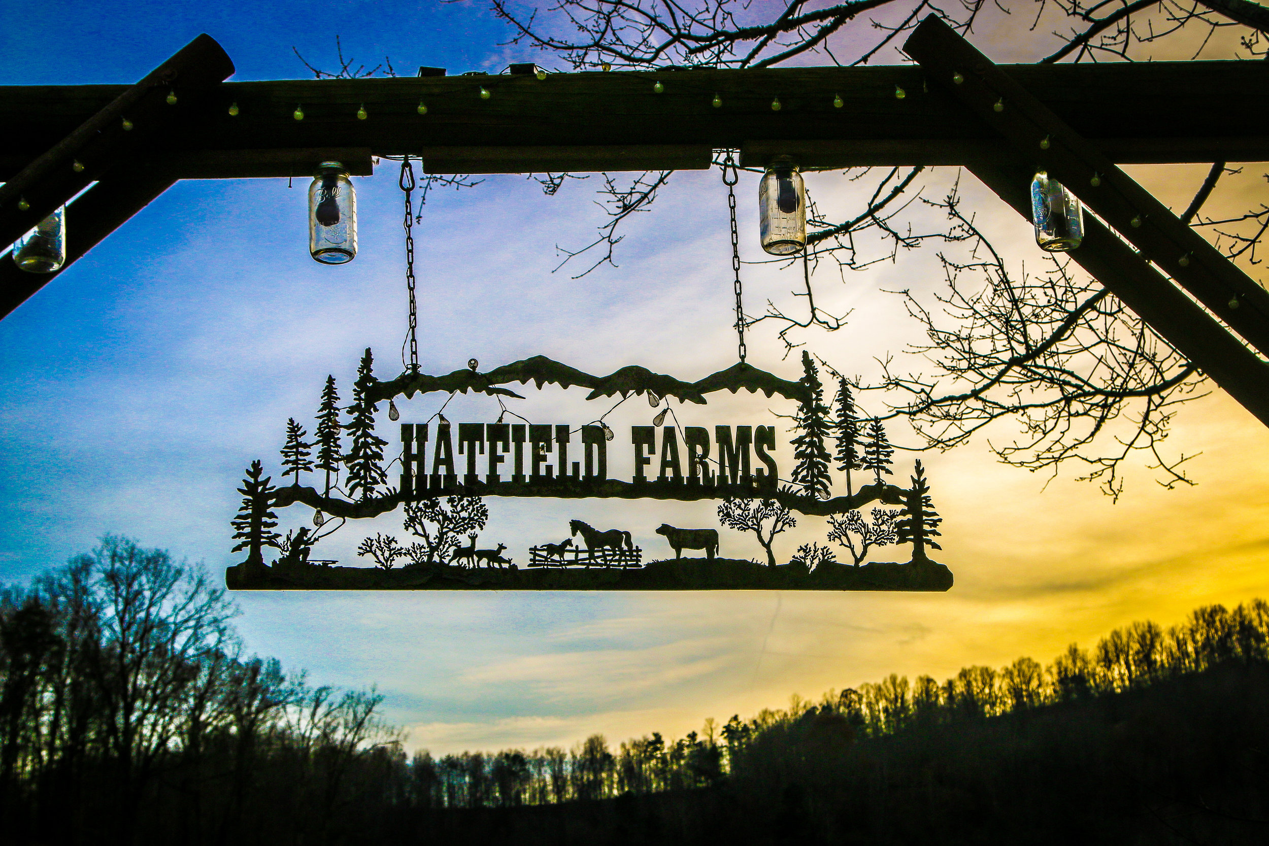 Hatfield Farms